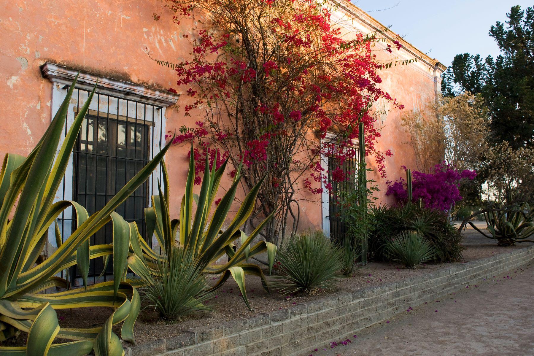 Additional photo for property listing at Hacienda Las Trancas Carretera a Dolores San Miguel De Allende, Guanajuato 37700 México