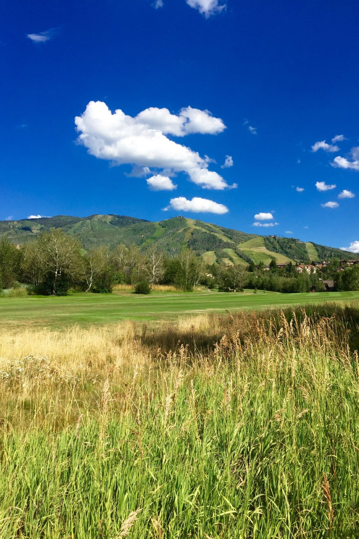 Land for Sale at Best Duplex Building Lot on Rolling Stone Golf Course 1340 Steamboat Boulevard, Steamboat Springs, Colorado, 80487 United States