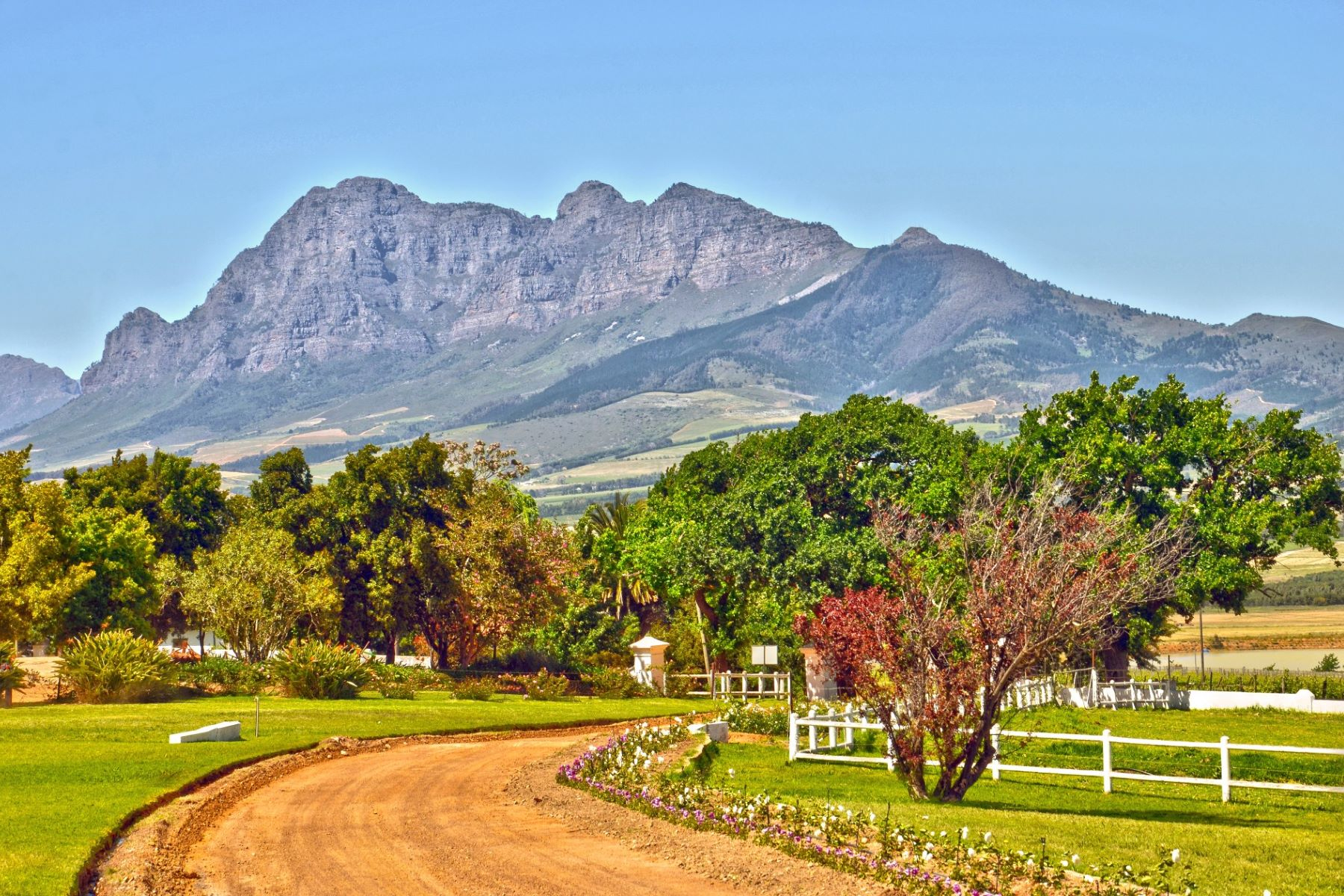 Farm / Ranch / Plantation for Sale at South African Icon Wine Estate Paarl, Western Cape, 7655 South Africa