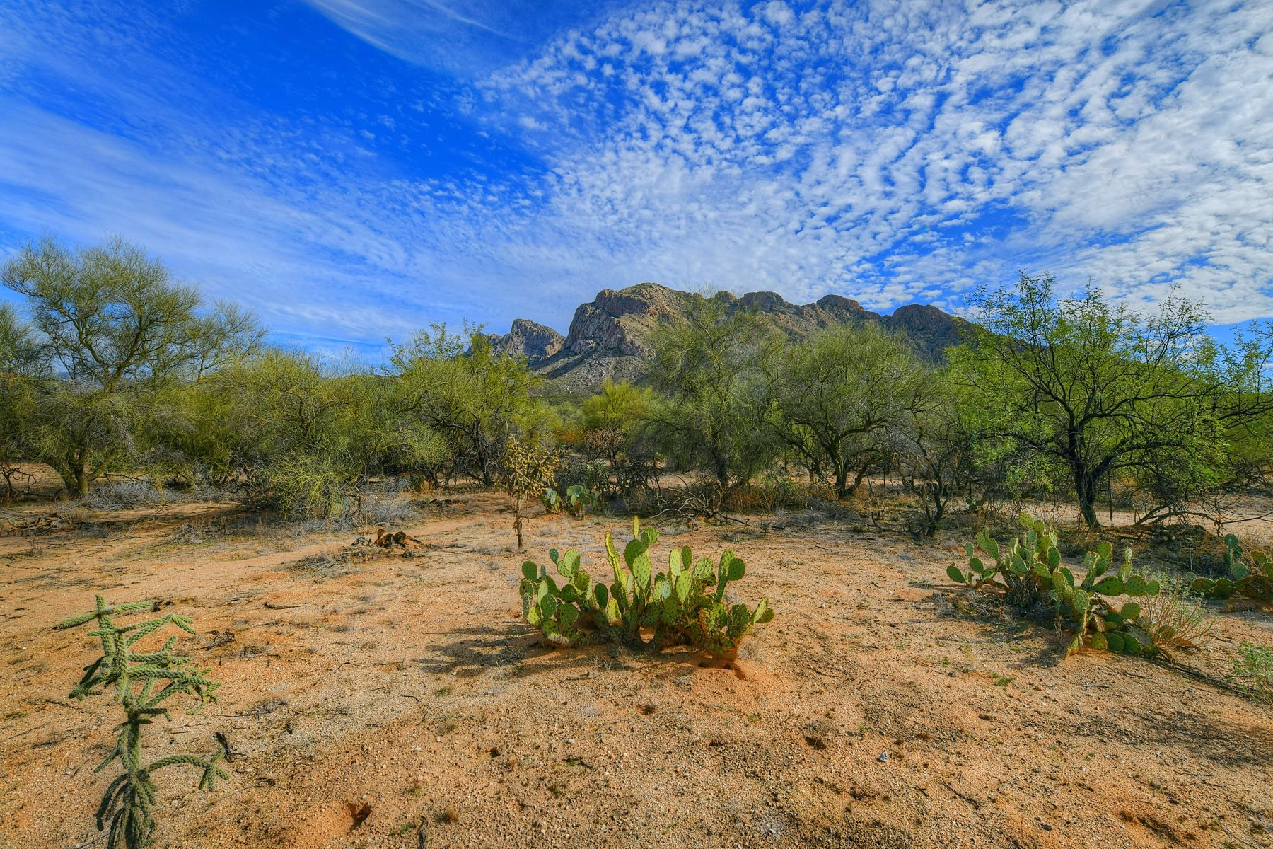Land for Active at Great Oracle Road Frontage Property 9265 N Oracle Road Tucson, Arizona 85704 United States