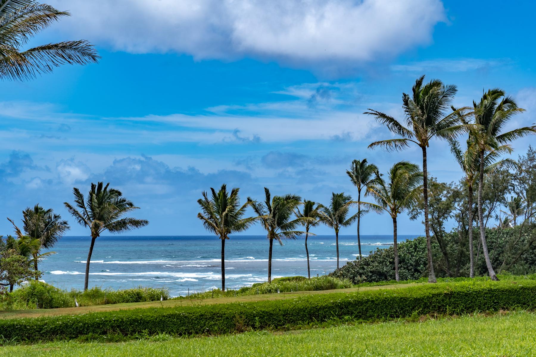 Single Family Homes för Försäljning vid Hale Lani Ahe 5350 Kalalea Drive #8D, Anahola, Hawaii 96746 Förenta staterna