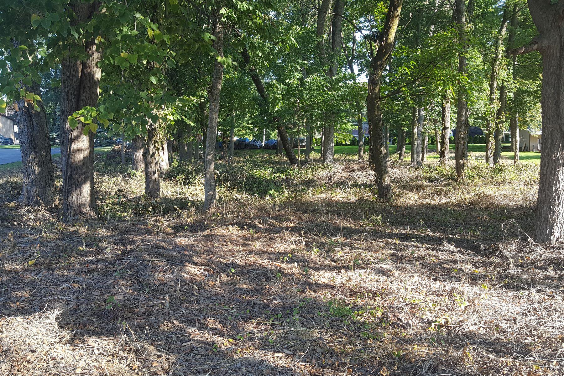Land for Sale at 1110 Elliott Street 1110 Elliot Street Lakeside Marblehead, Ohio 43440 United States