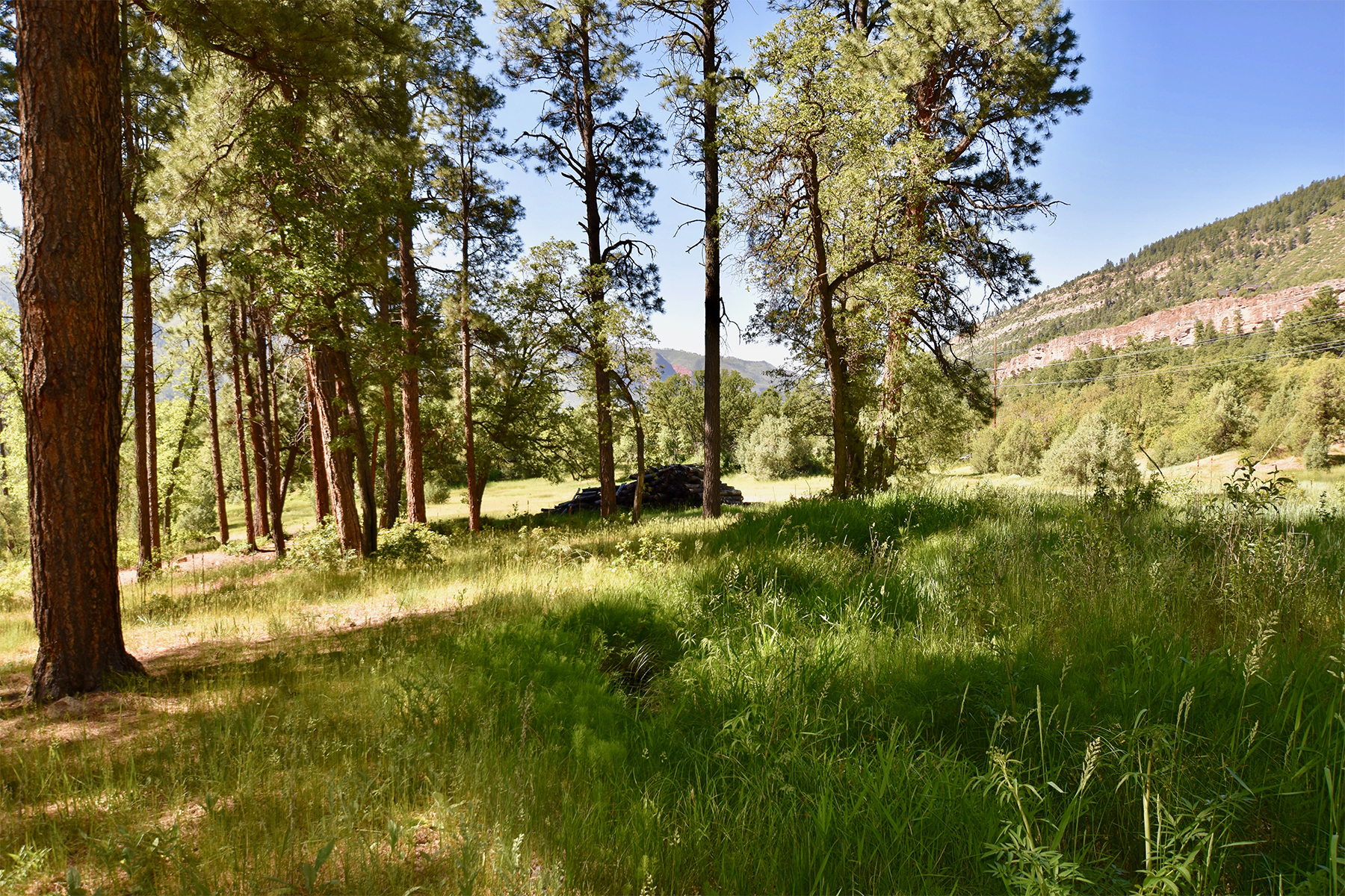 Additional photo for property listing at Painter Ranch 290 Painter Ranch Trail Durango, Colorado 81301 United States