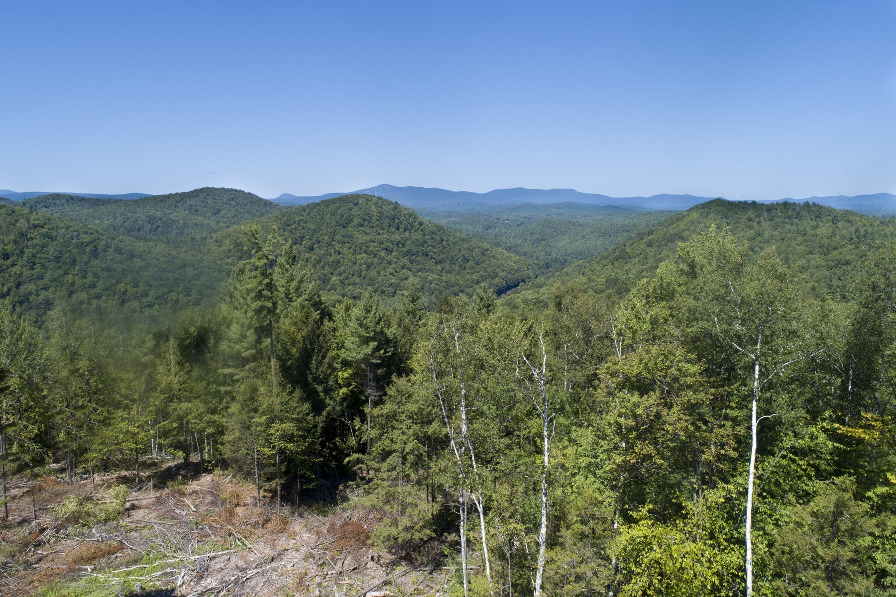 Land for Sale at Under The Mountain Road, Jamaica Under The Mountain Rd Jamaica, Vermont 05343 United States