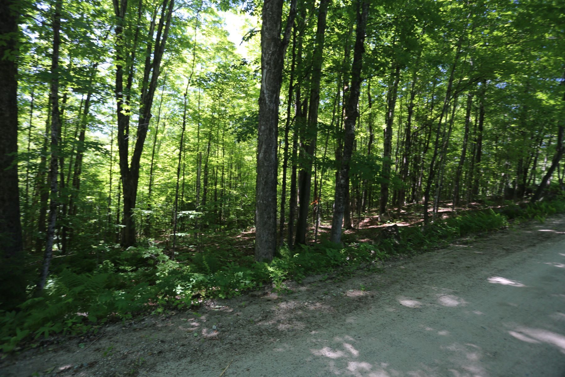 Land for Sale at Lot 5 Wiggins Road, Danbury Lot 5 Wiggins Rd Danbury, New Hampshire 03230 United States