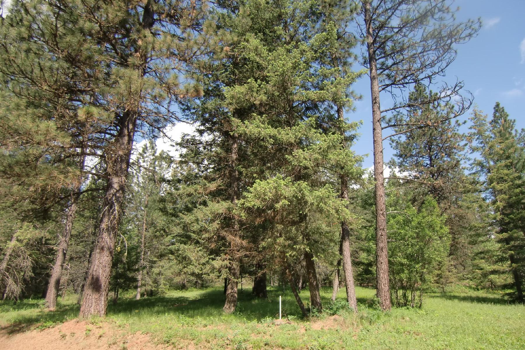 Terreno por un Venta en Stoneridge Vacant Lot NNA Parkland Dr Blanchard, Idaho, 83804 Estados Unidos