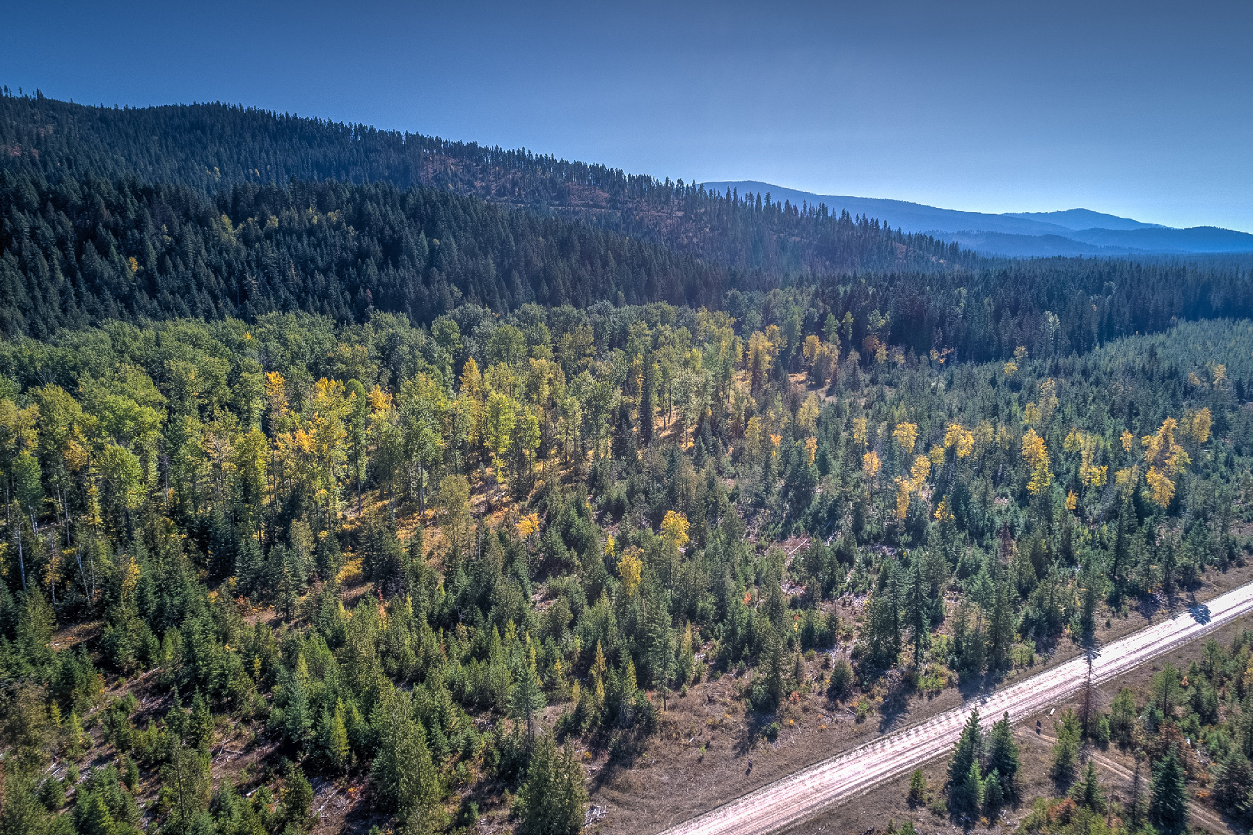 Land for Sale at BUSHWOOD ESTATES Lot 7 1406 Lost Creek Rd Coolin, Idaho 83821 United States