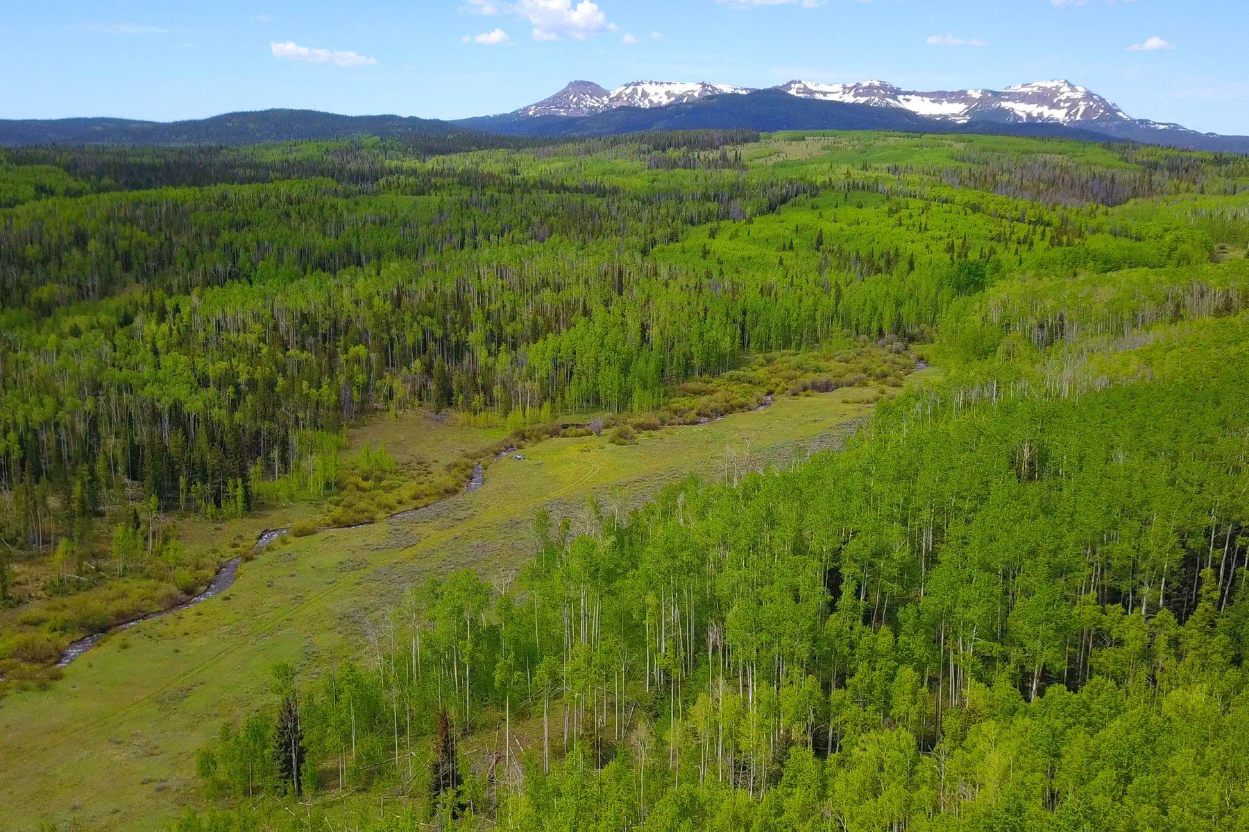 Land for Active at Five Pine Mesa Ranch 24655 County Road 3B Yampa, Colorado 80483 United States