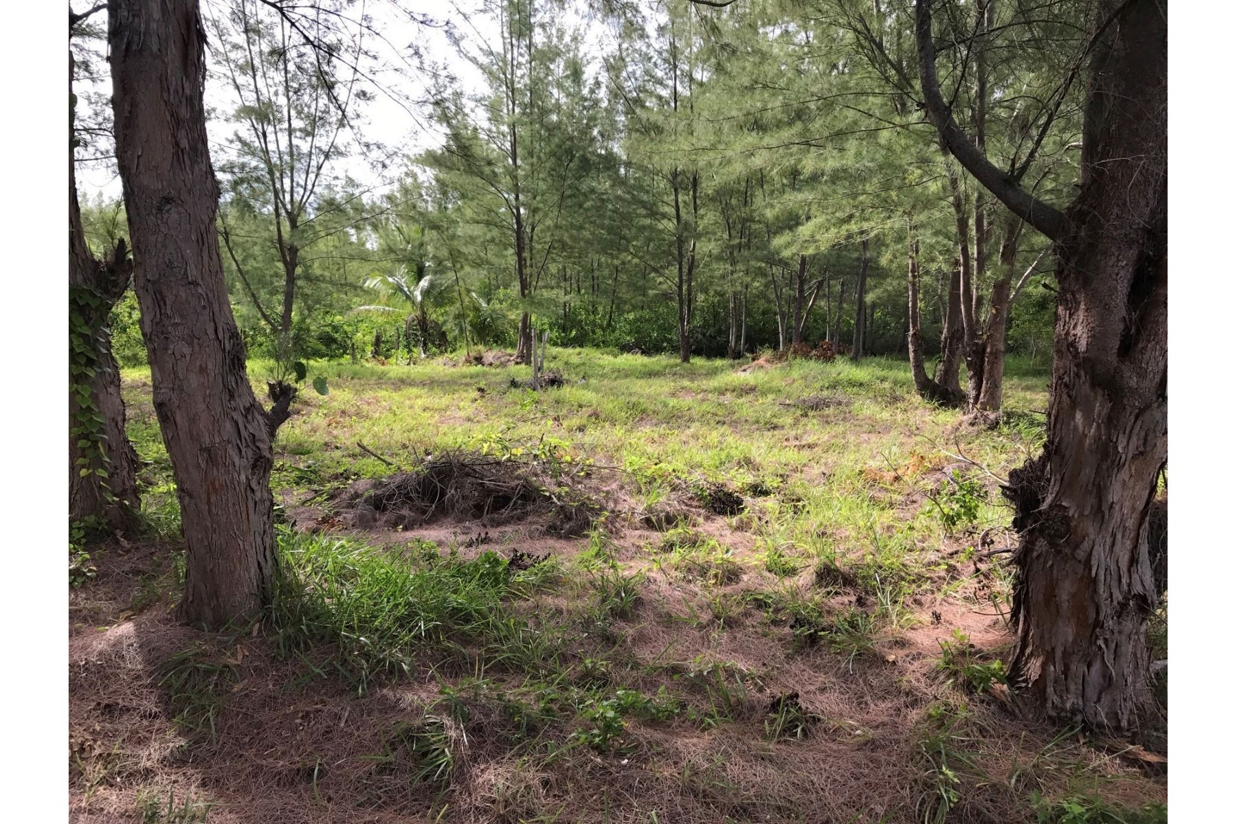 Land for Sale at Lot 12, Block 194 Treasure Cay, Abaco Bahamas