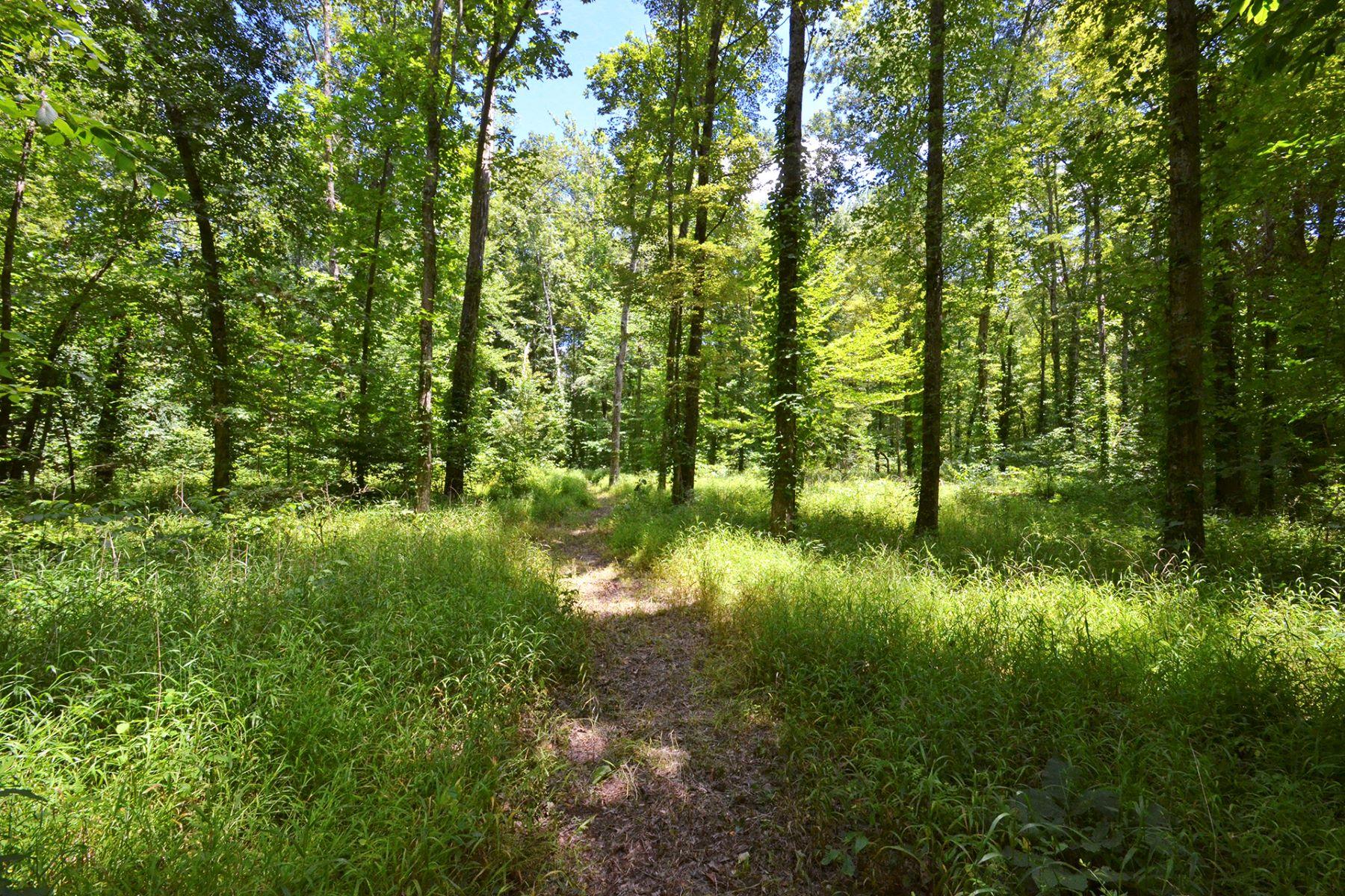 土地 为 销售 在 10.66 Acres of Flat, Heavily Wooded Privacy for Your Dream Retreat! 1922-1924 Hickory Lane Goshen, 俄亥俄州 45122 美国
