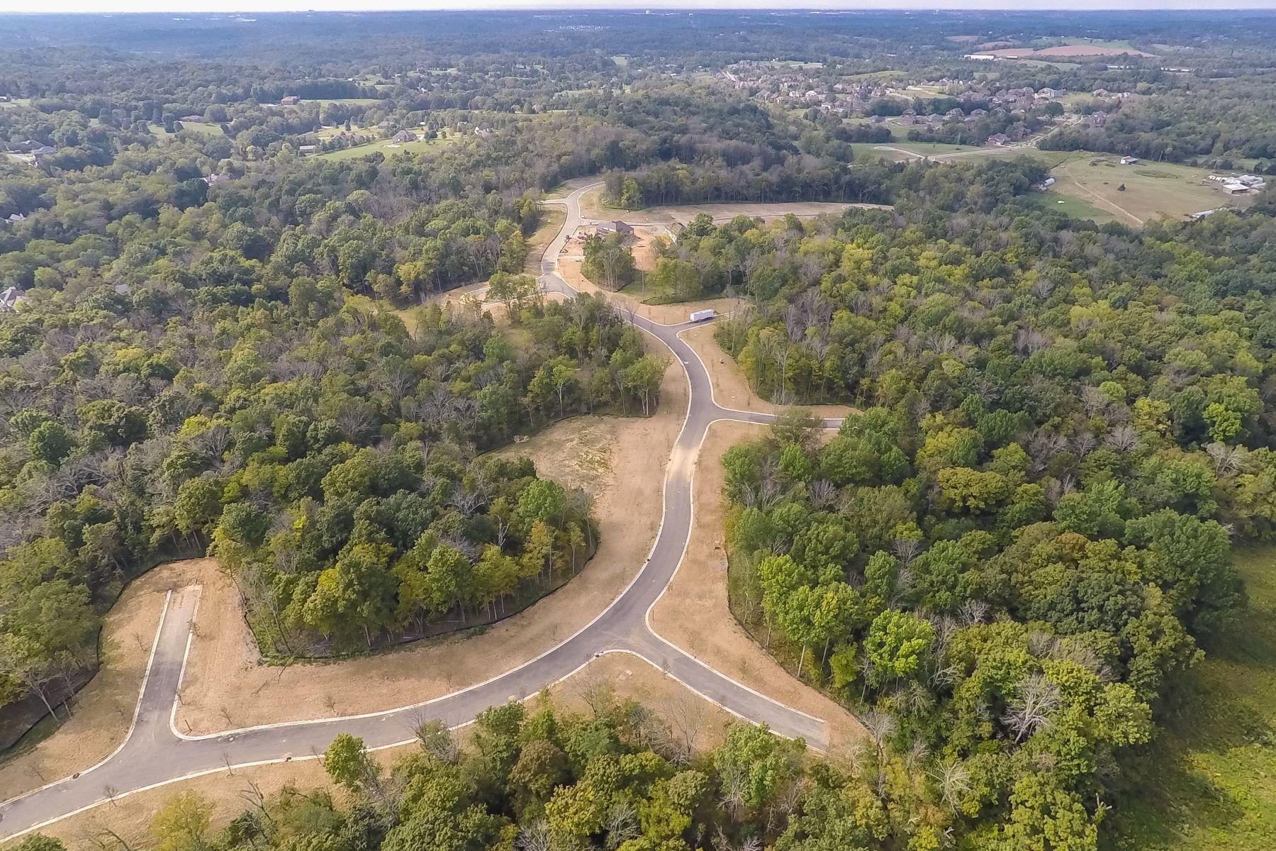 토지 용 매매 에 260 Shakes Creek Drive Fisherville, 켄터키, 40023 미국