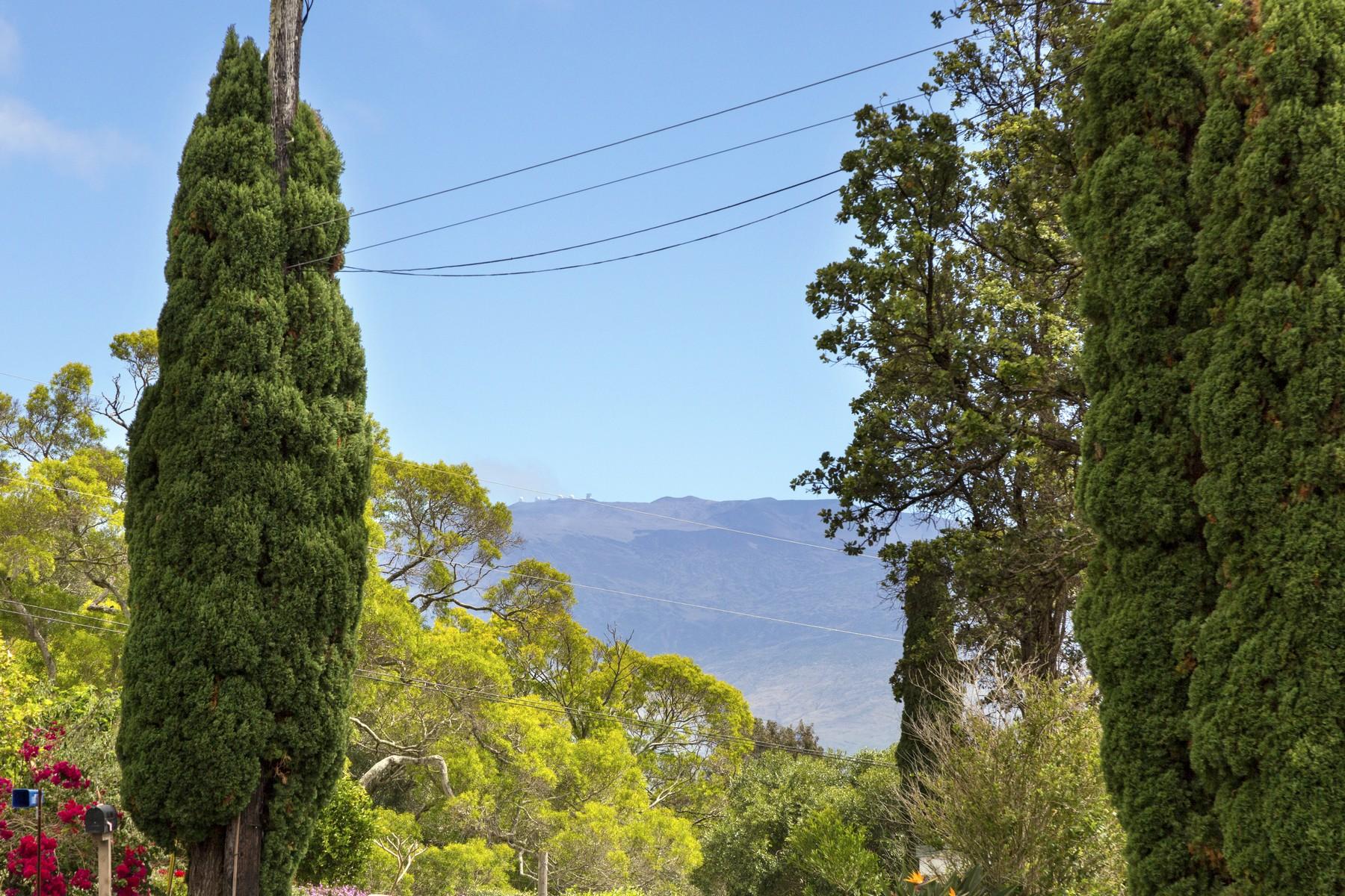 단독 가정 주택 용 매매 에 Kamuela Heights 65-1232 Laelae Pl, Kamuela, 하와이, 96743 미국