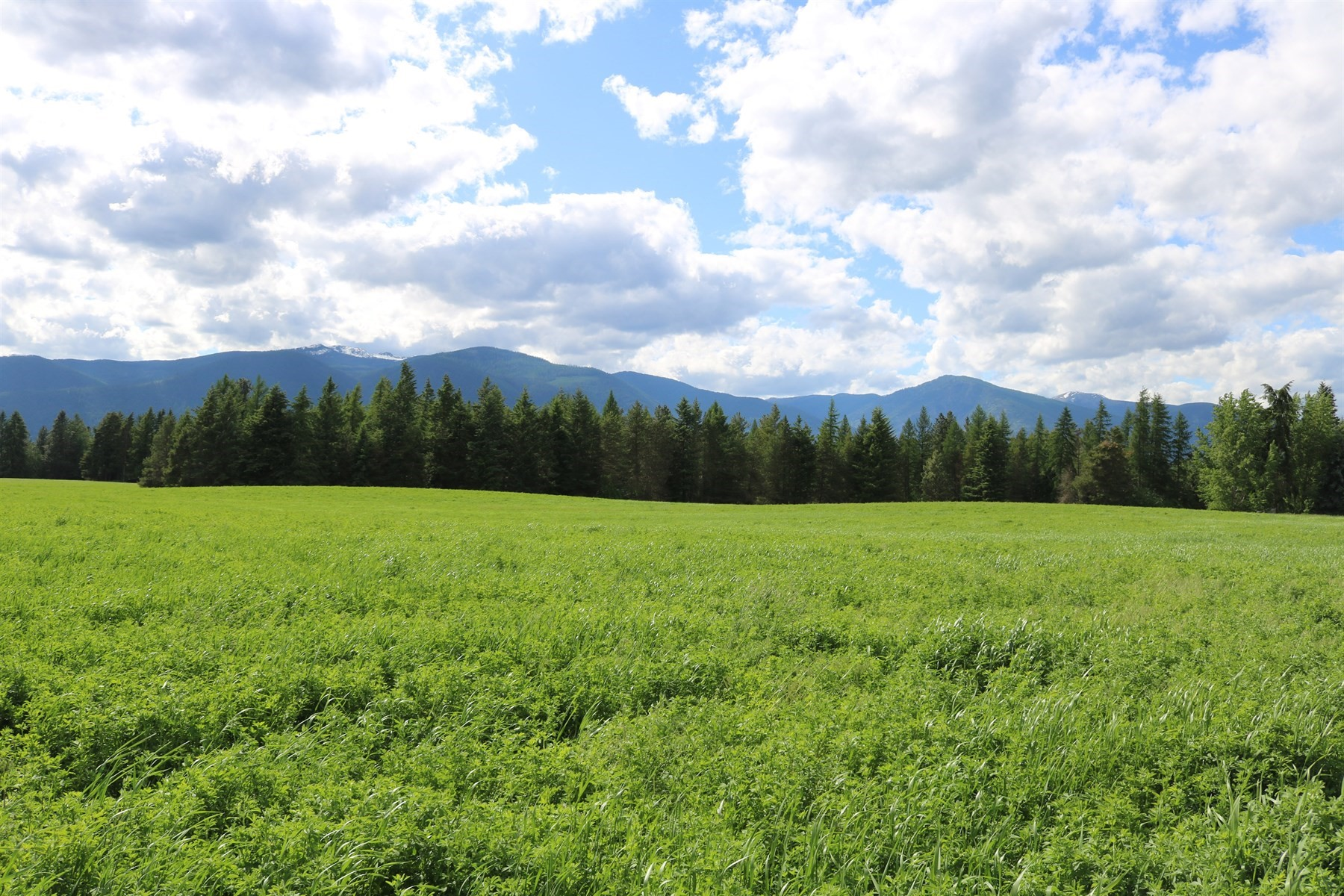 Land for Sale at Dirks Farm NNA Moon Shadow Rd Bonners Ferry, Idaho 83805 United States
