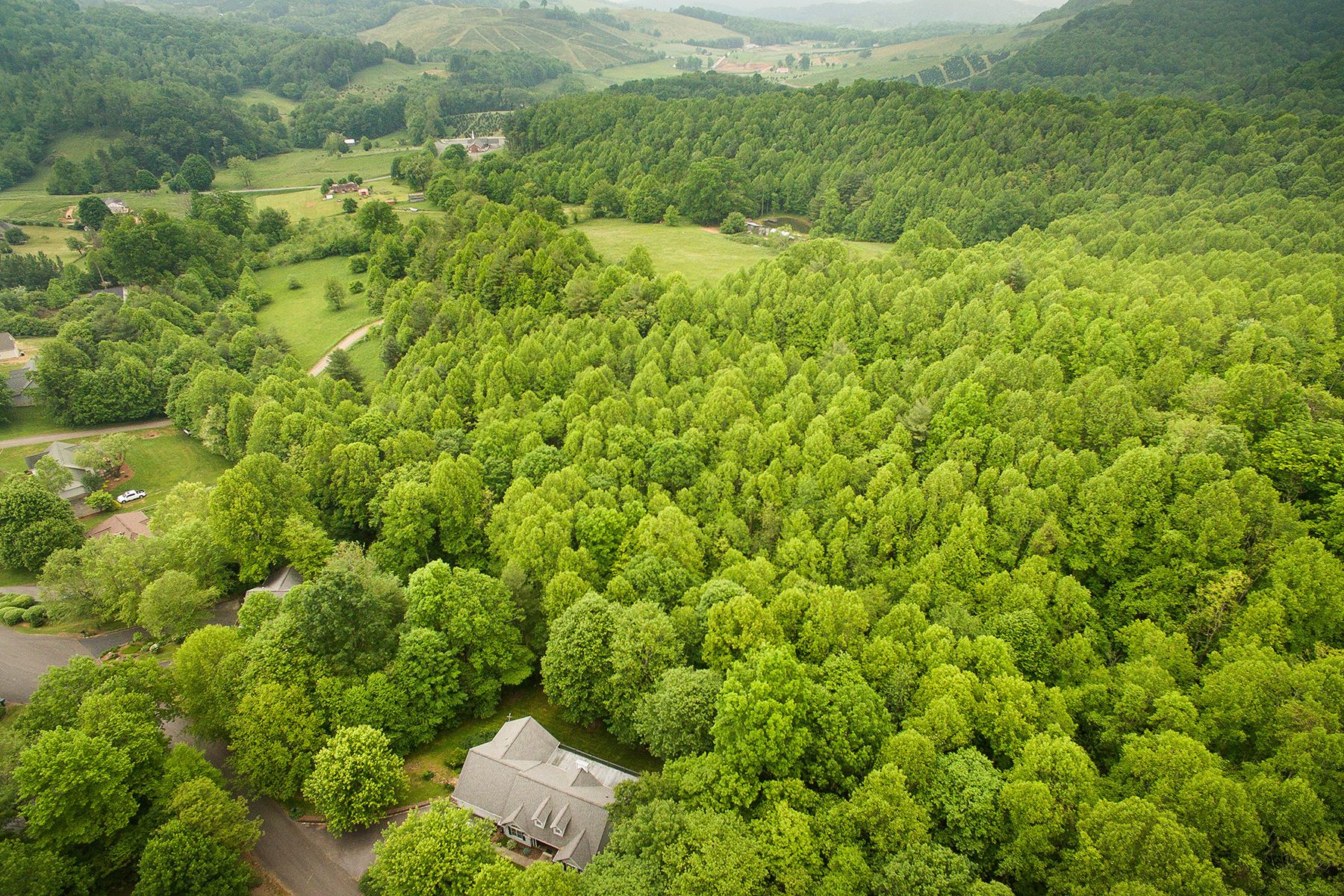 Land for Active at BUCK MOUNTIAN ESTATES - WEST JEFFERSON Lot 77 White Tail Trl West Jefferson, North Carolina 28694 United States