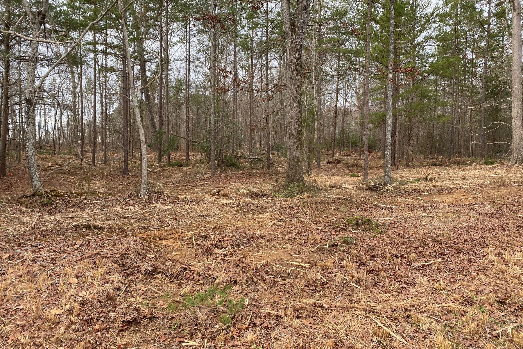 Land for Active at 6 Pine Knot Drive - LOT 6 Pine Knot Drive Pelzer, South Carolina 29669 United States