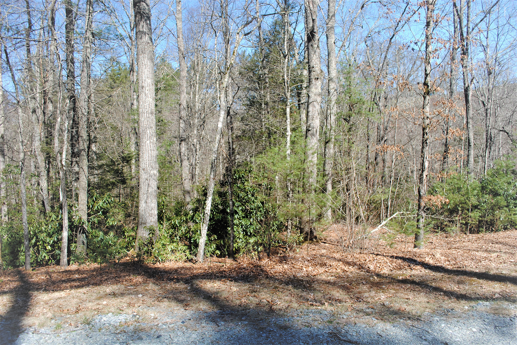 Land for Sale at STONECREST - FLEETWOOD Lot 32 Maple Leaf Rd Fleetwood, North Carolina 28626 United States