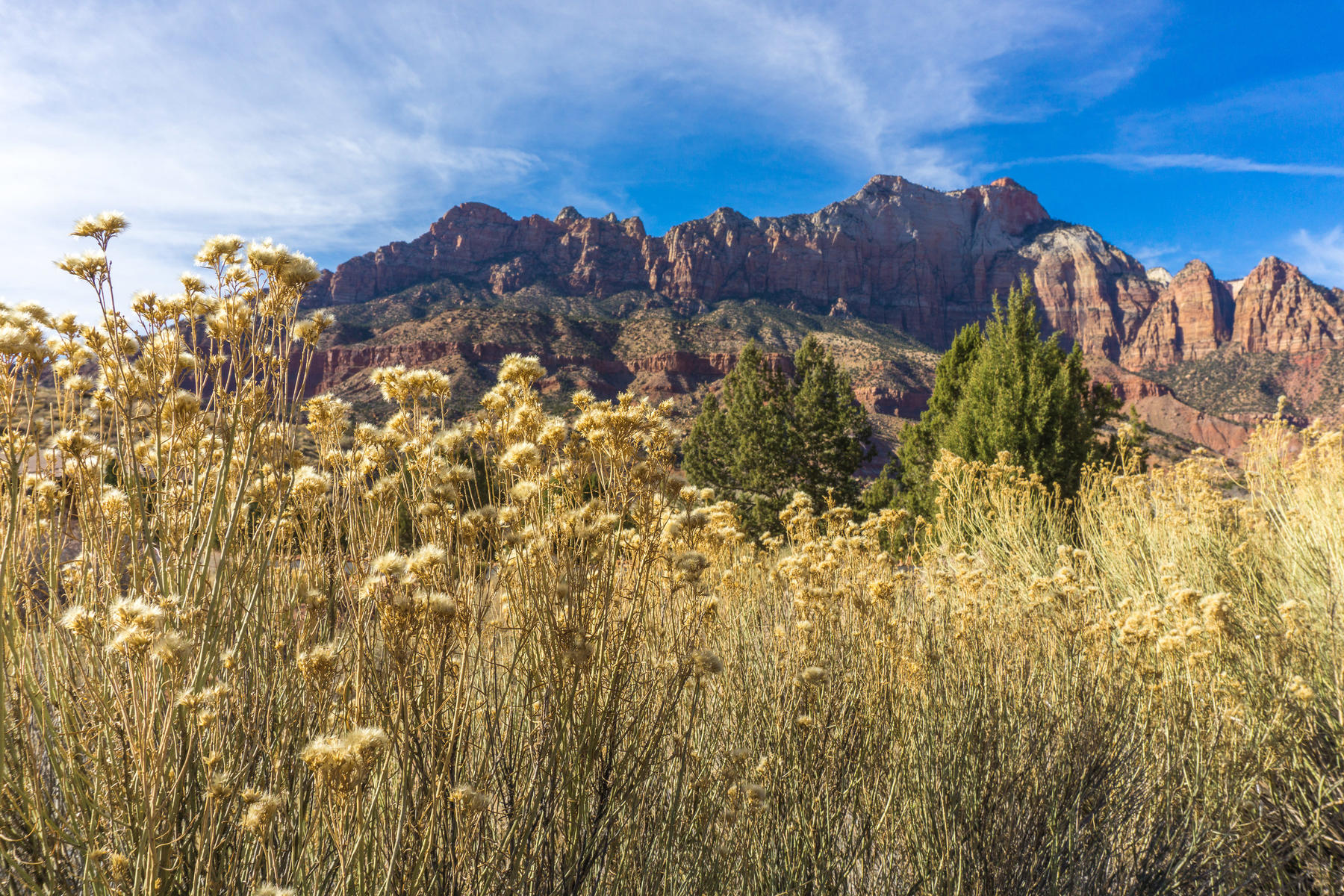 SECLUDED VIEW LOT IN ZION Lot 21 Canyon Cove Circle Springdale, Utah 84767 United States