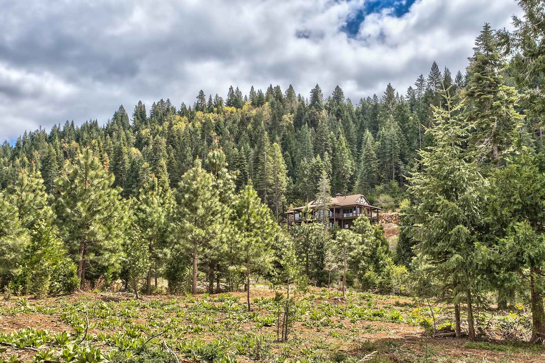 Additional photo for property listing at 28175 Myhrer Way, Nevada City, CA, 95959 28175 Myhrer Way 内华达, 加利福尼亚州 95959 美国