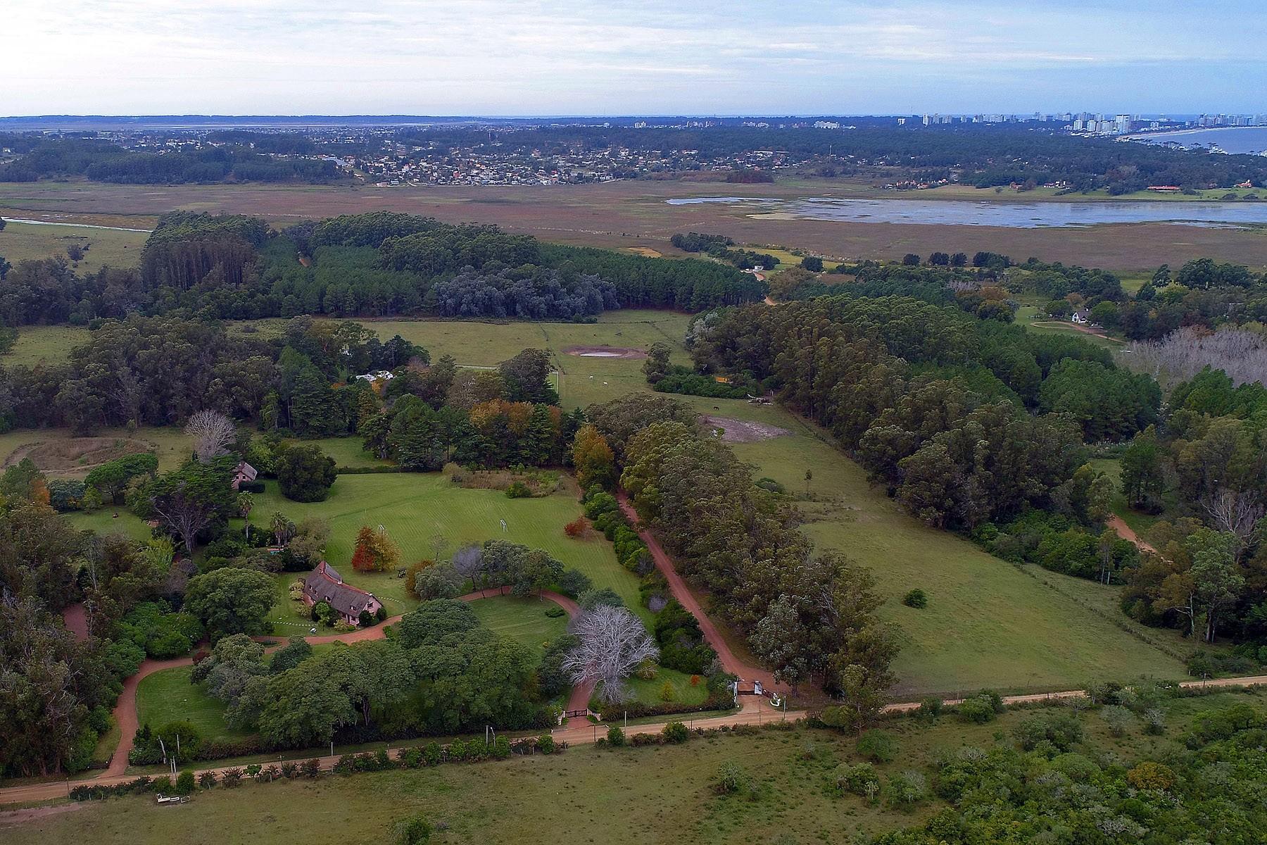 农场 / 牧场 / 种植园 为 销售 在 49 acre farm on Punta Ballena 马尔多纳多, 马尔多纳多 乌拉圭