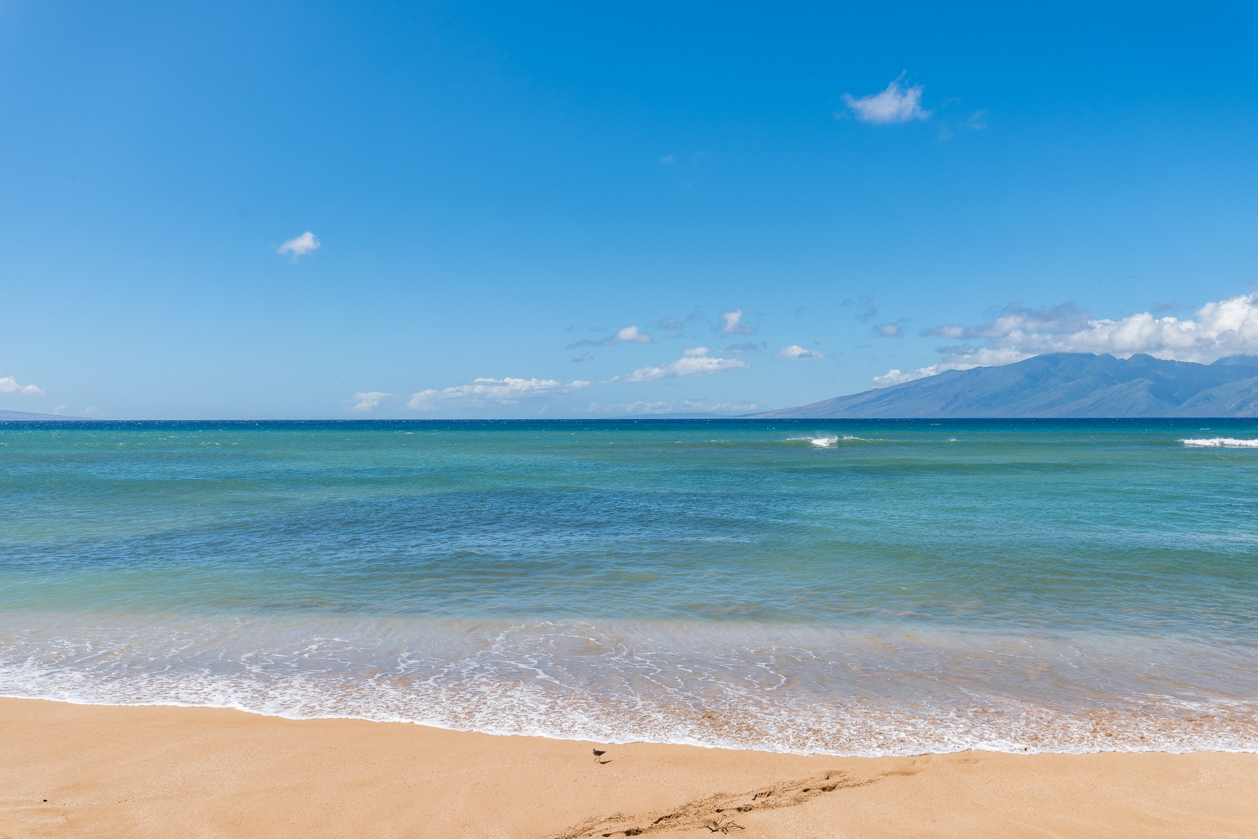 Condominiums för Försäljning vid Boutique Property On a White Sandy Beach in West Maui! 3875 L Honoapiilani Rd, 106A, Lahaina, Hawaii 96753 Förenta staterna
