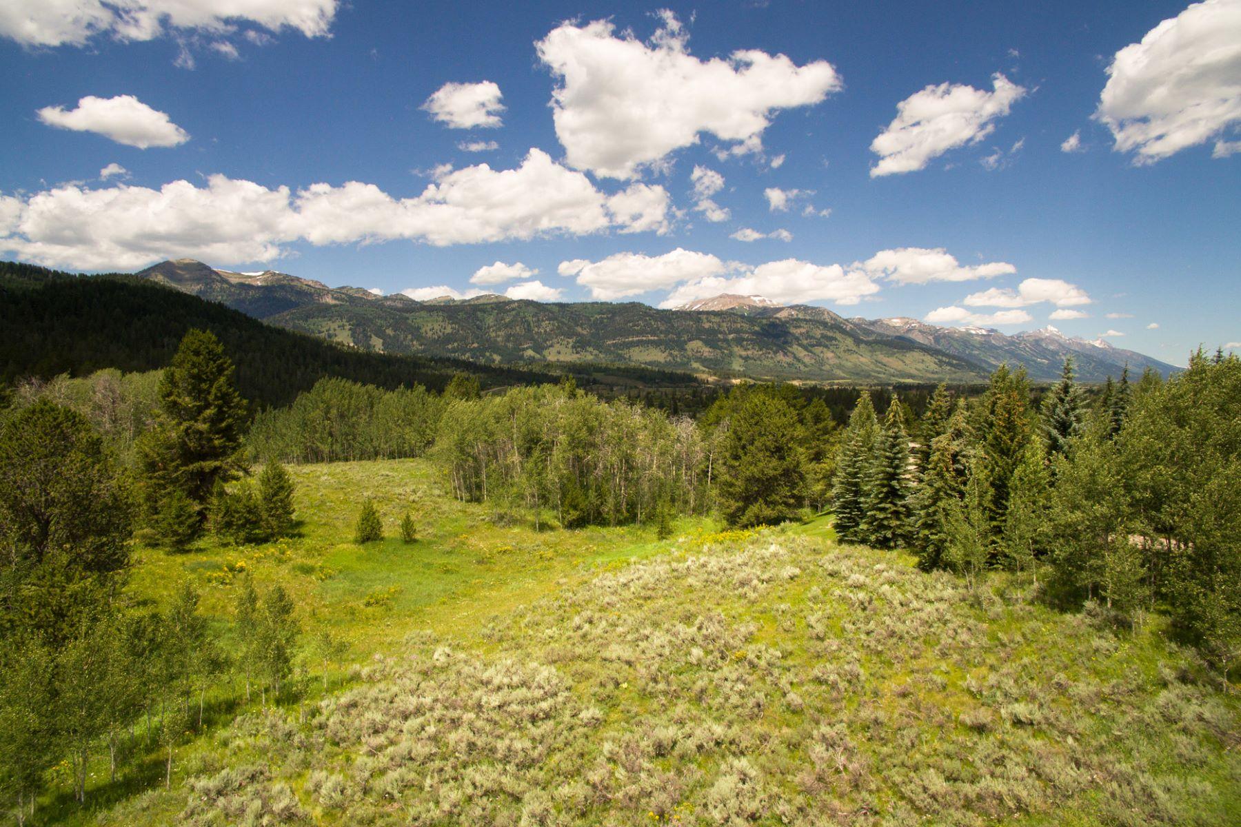 Terrain pour l Vente à 6 acre Lot in Crescent H Ranch 1002 S. Fall Creek Road Wilson, Wyoming, 83014 Jackson Hole, États-Unis