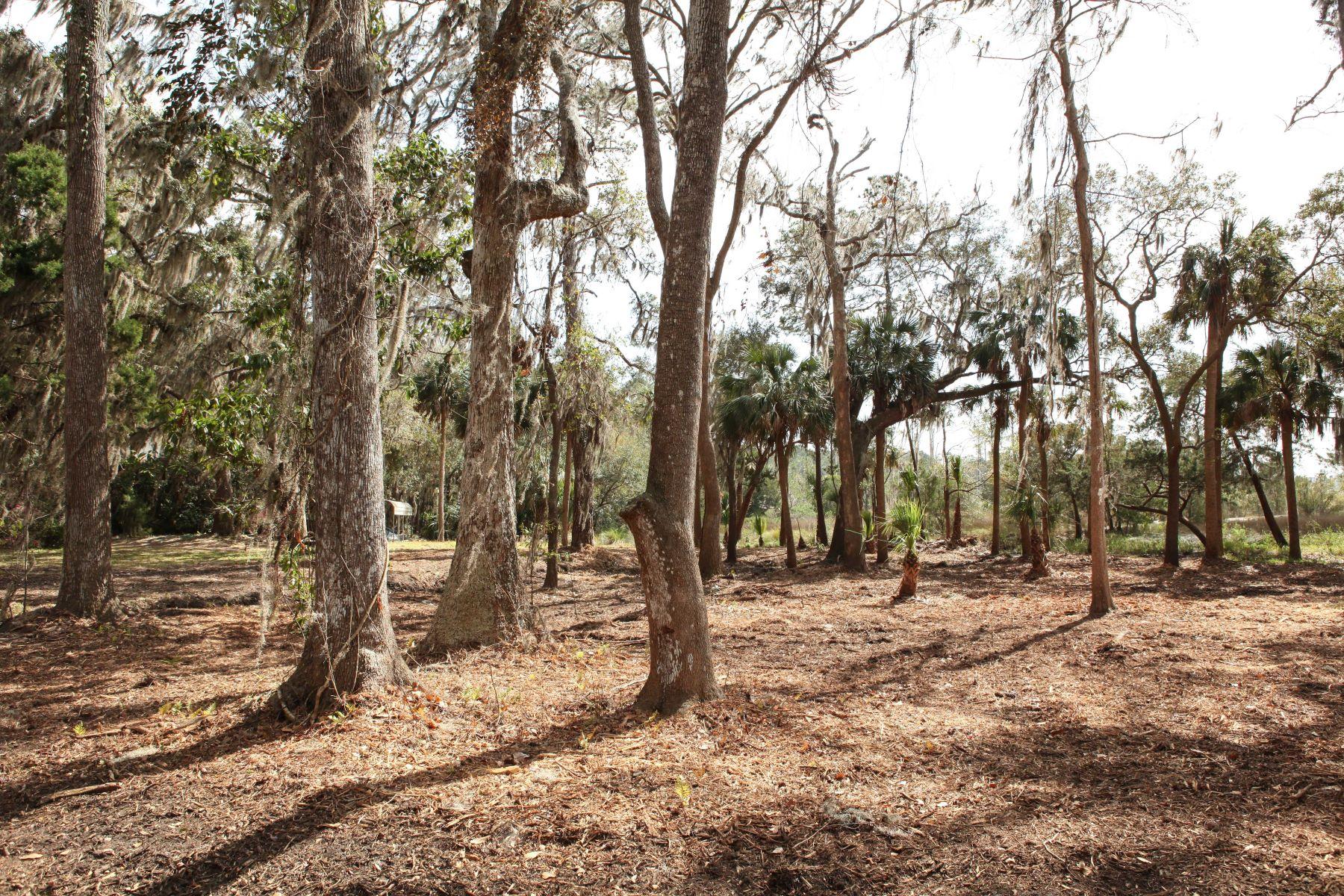 Additional photo for property listing at 429A Beaulieu 492 A Beaulieu Avenue, Savannah, ジョージア 31406 アメリカ