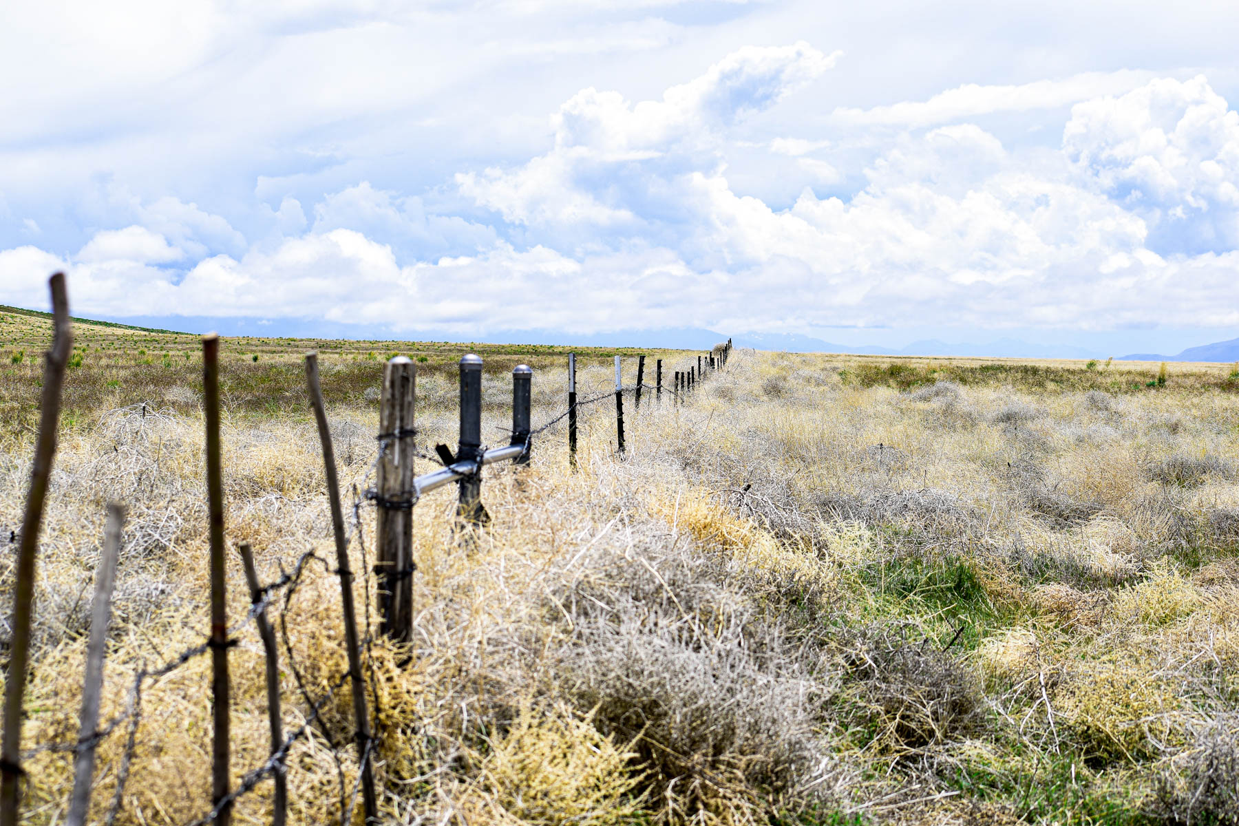 Additional photo for property listing at 25 Ranch, Battle Mountain, Nevada 25 Ranch Battle Mountain, 内华达州 89820 美国