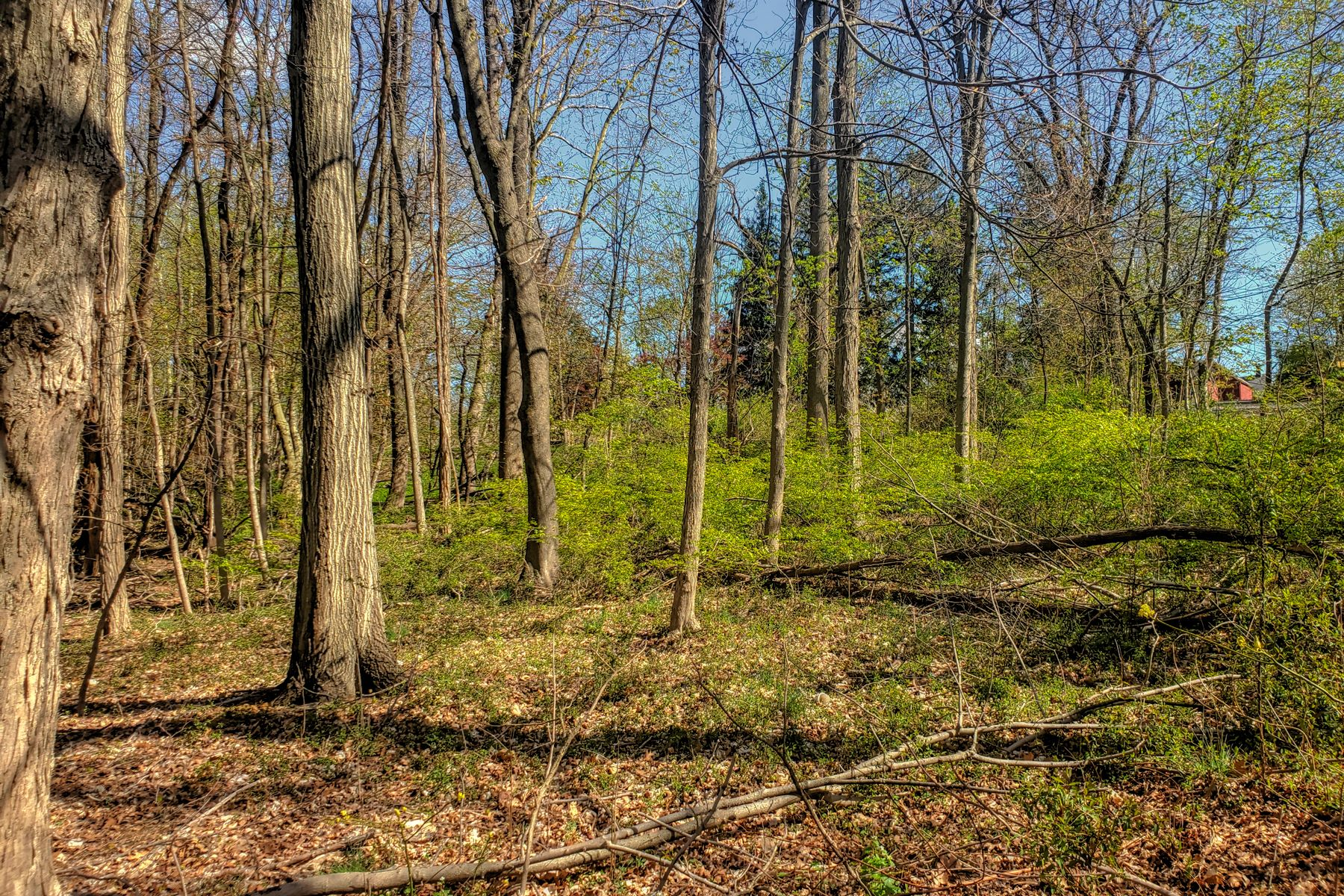 Land for Active at Build Your Dream Home 26 Hickory Tavern Road Long Hill Township, New Jersey 07933 United States