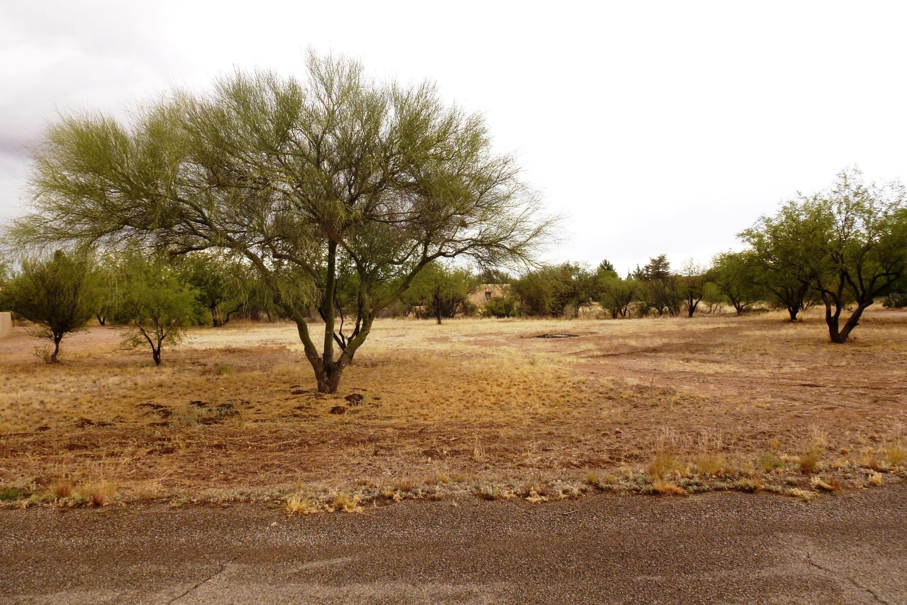 Land for Sale at Great level building site on private cul de sac 15 Circulo Figueroa Tubac, Arizona, 85646 United States