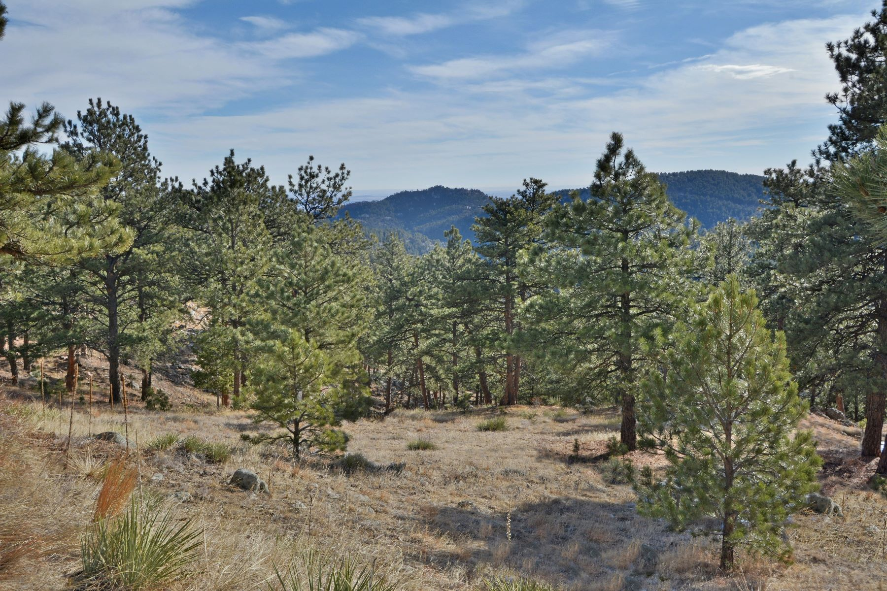 Land for Active at Attractive Carriage Hills Estates 0 W Coach Rd Boulder, Colorado 80302 United States