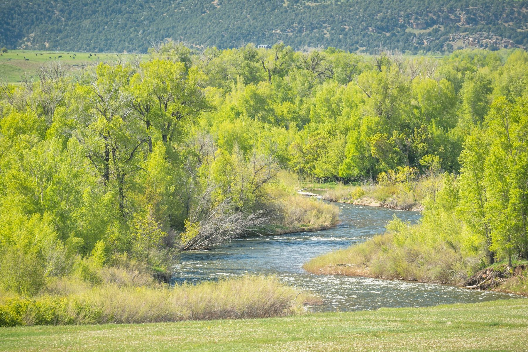 Land for Sale at Acreage on the White River TBD County Road 8 Meeker, Colorado 81641 United States