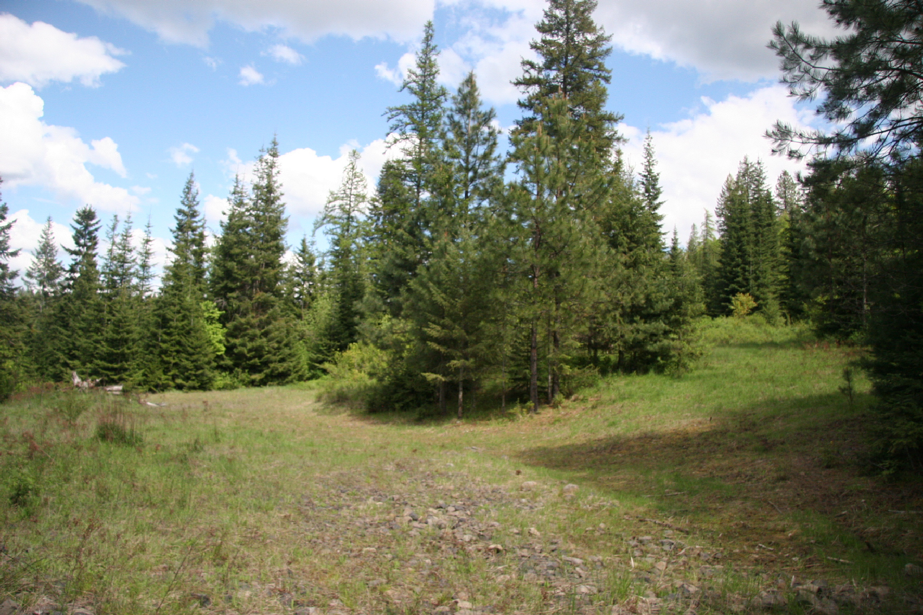 أراضي للـ Sale في Lot 1 Asbury Rd Harrison Idaho Harrison, Idaho 83833 United States