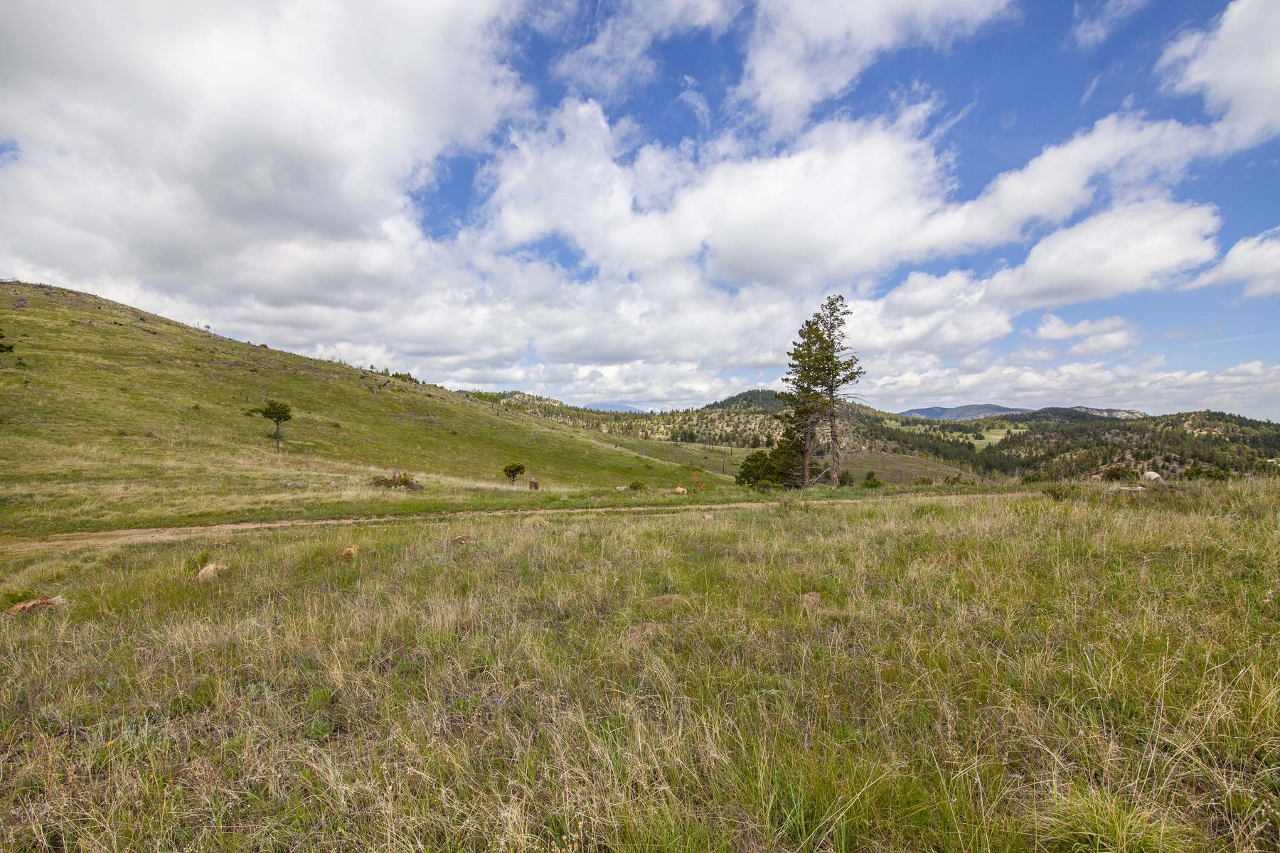 Land for Active at Build Your Own Private Retreat 781 County Road 87J Jamestown, Colorado 80455 United States