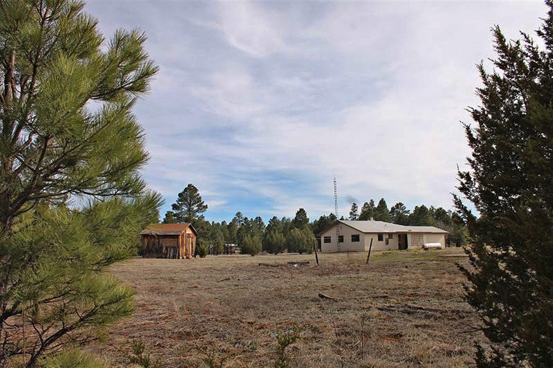 Maison unifamiliale pour l Vente à Perfect Place for Commerical Use 2819 AZ-260 RD Overgaard, Arizona, 85933 États-Unis
