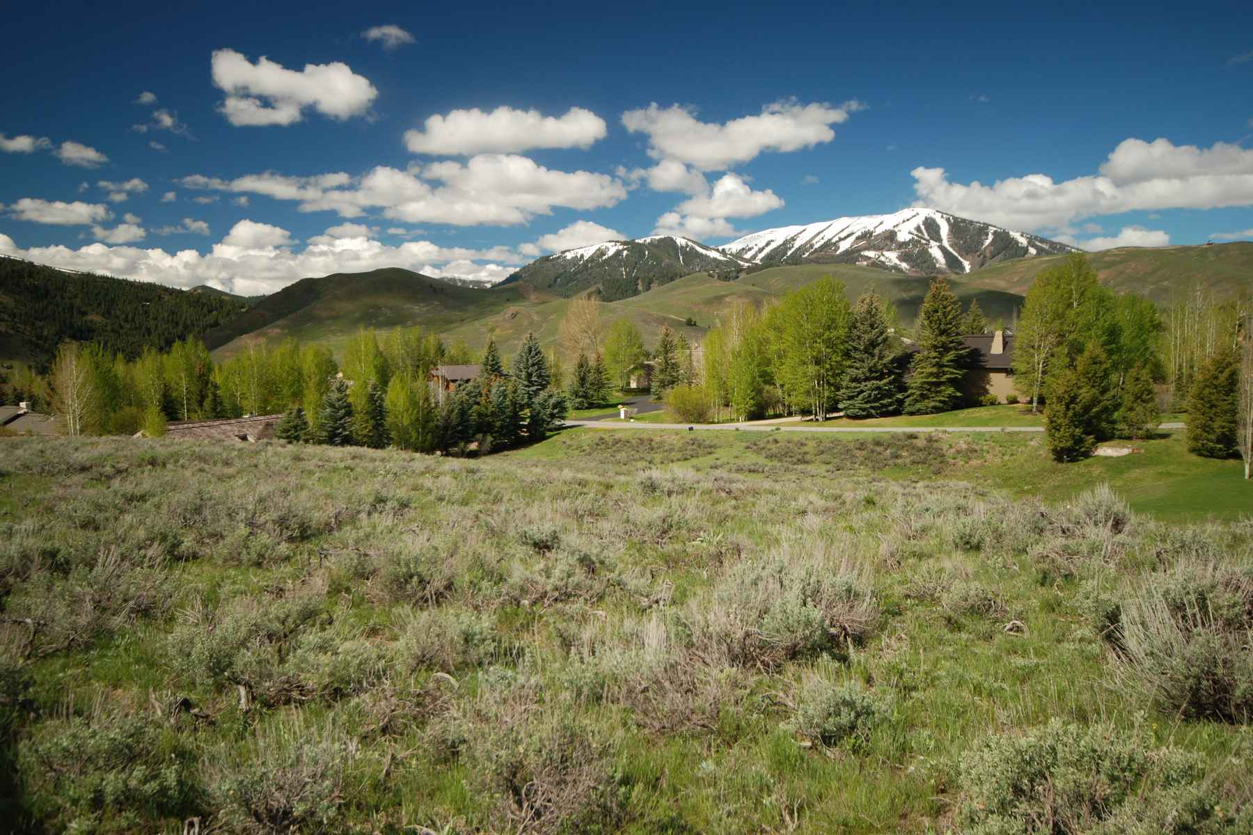 Land for Sale at Sunny and Quiet 104 Fireweed Sun Valley, Idaho 83353 United States