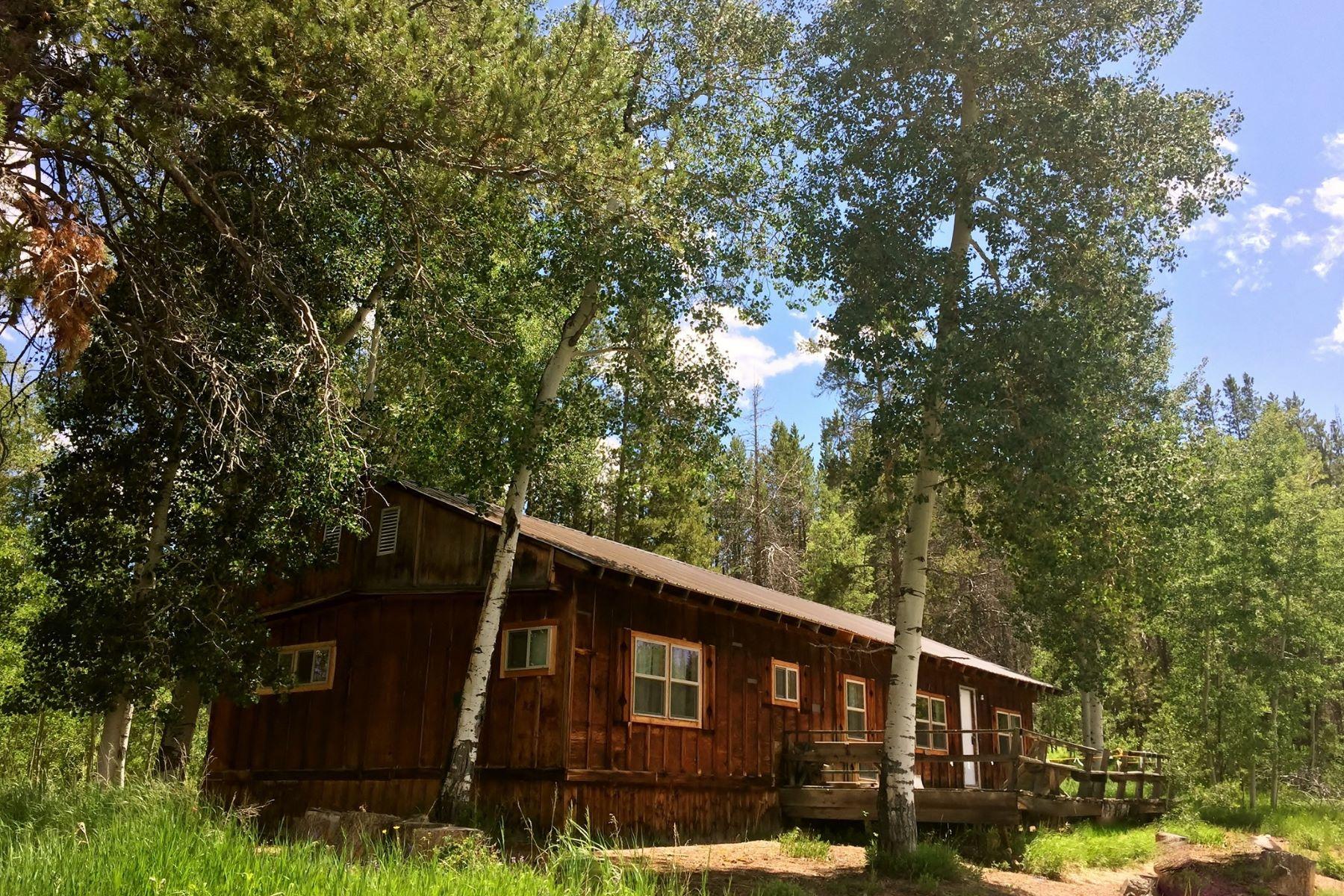 Single Family Homes por un Venta en Beautiful Wooded Setting 21245 County Road 16, Oak Creek, Colorado 80637 Estados Unidos