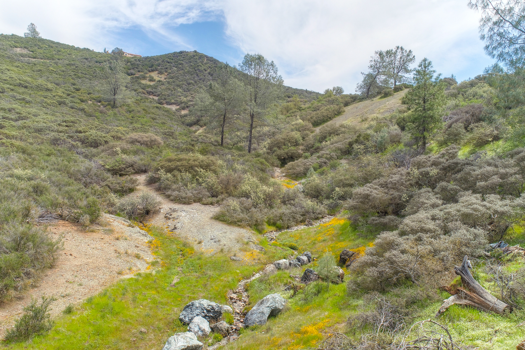Land for Sale at Lisa Ln, Placerville, CA 95667 Lisa Ln Placerville, California 95667 United States