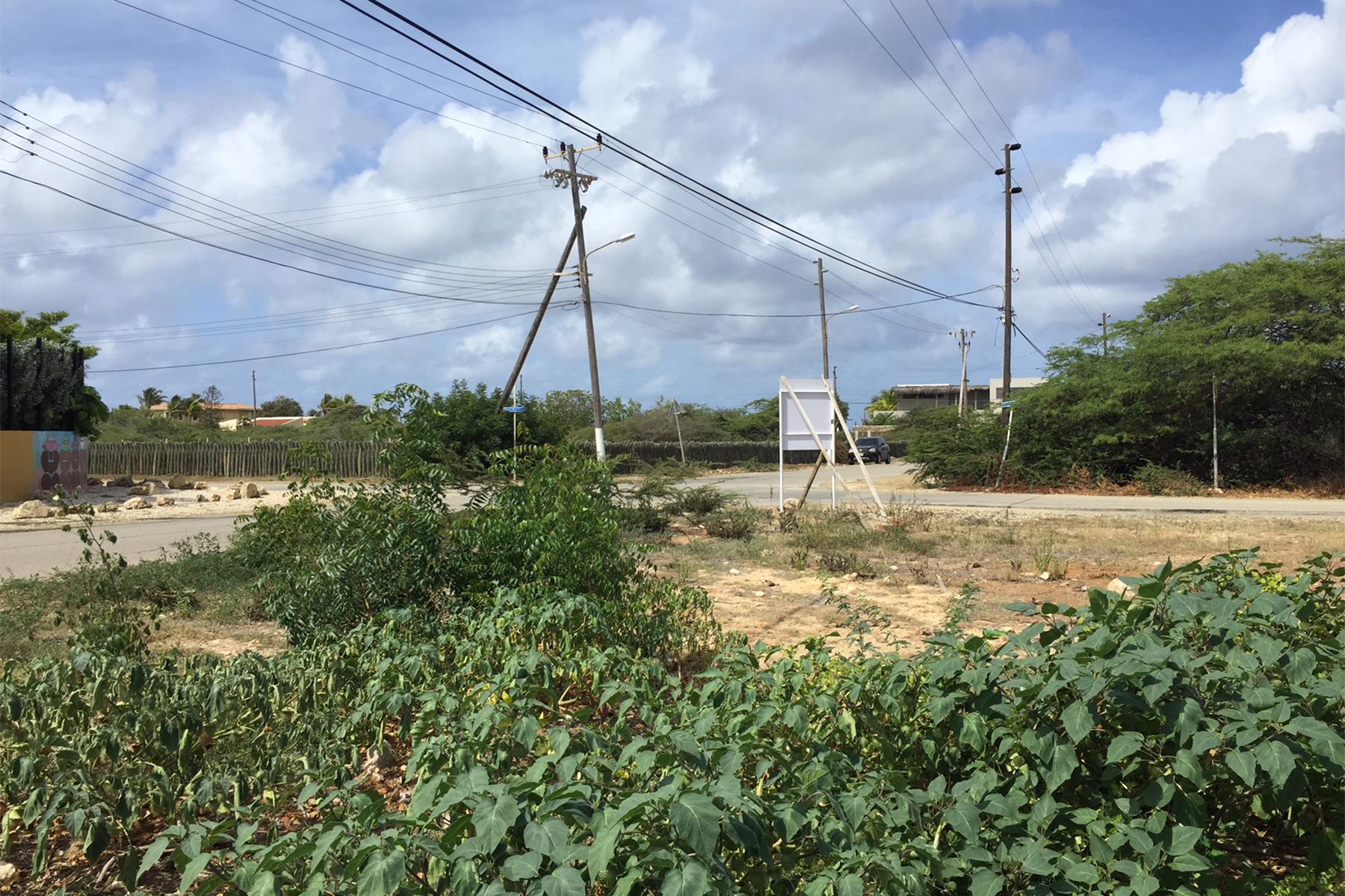 Additional photo for property listing at Belnem vacant lot Belnem,  Bonaire