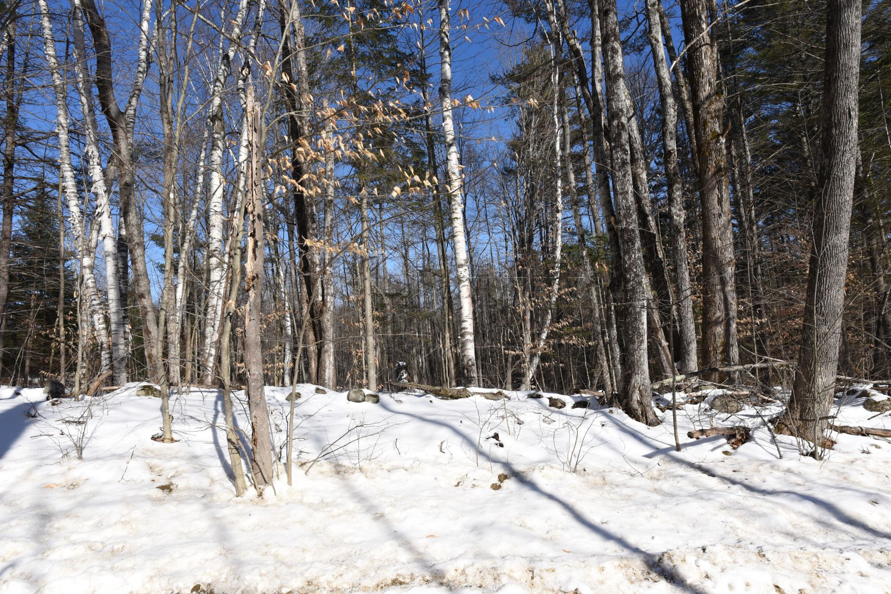 Land for Sale at Ten Acres in Newbury 00 Tucker Mountain Rd Newbury, Vermont 05051 United States