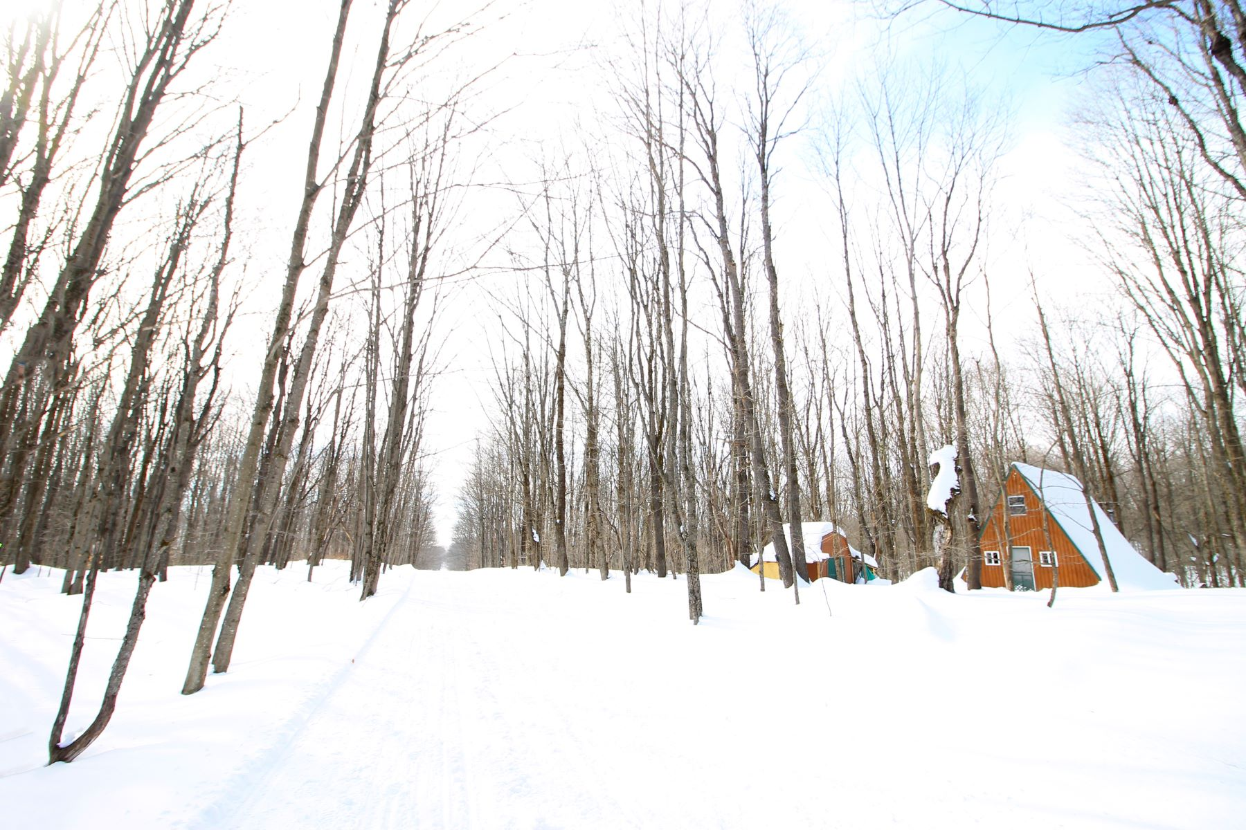 Single Family Homes for Sale at Rustic A-frame Ideal for Outdoor Enthusiasts 5317 Ziegler Road Boonville, New York 13309 United States