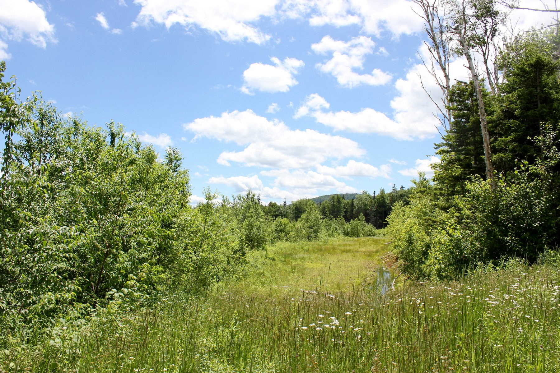 Land for Sale at Privacy & Views! Valley View Ext 1A Andover, Vermont 05143 United States
