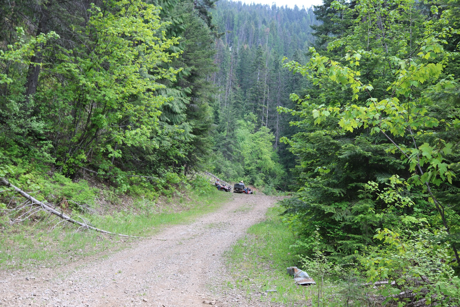 Land for Sale at Western Adventure No 2 16b Lakeview Cutoff Rd Lakeview, Idaho 83803 United States