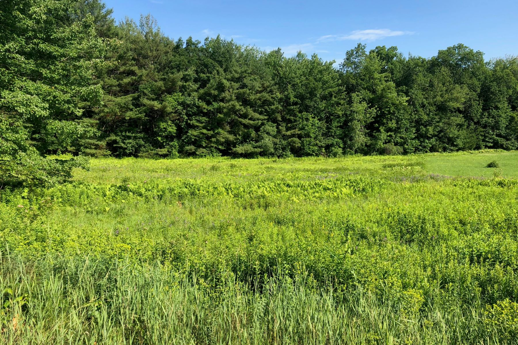 Land for Sale at 231 Sandown Road, Chester 231 Sandown Rd Chester, New Hampshire 03036 United States