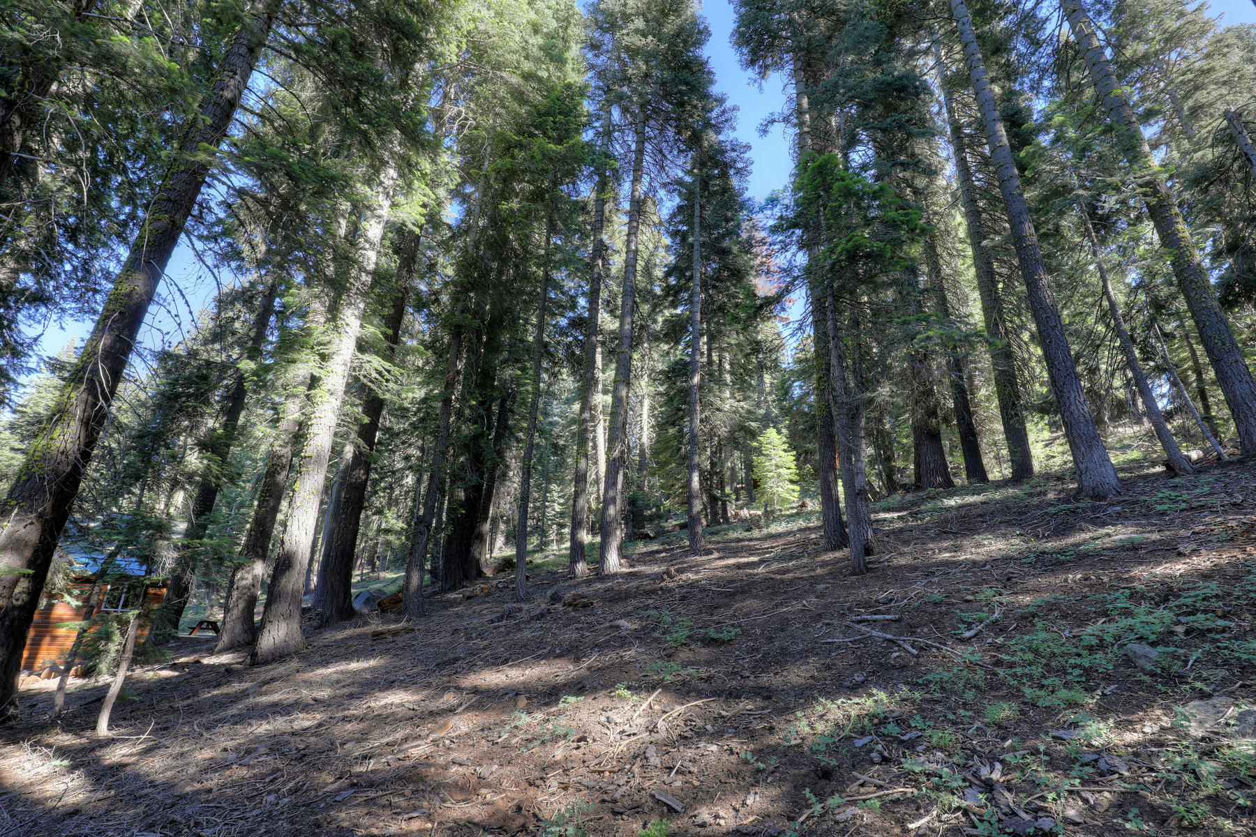 Land for Active at 14281 Herringbone Way, Truckee, CA 14281 Herringbone Way Truckee, California 96161 United States
