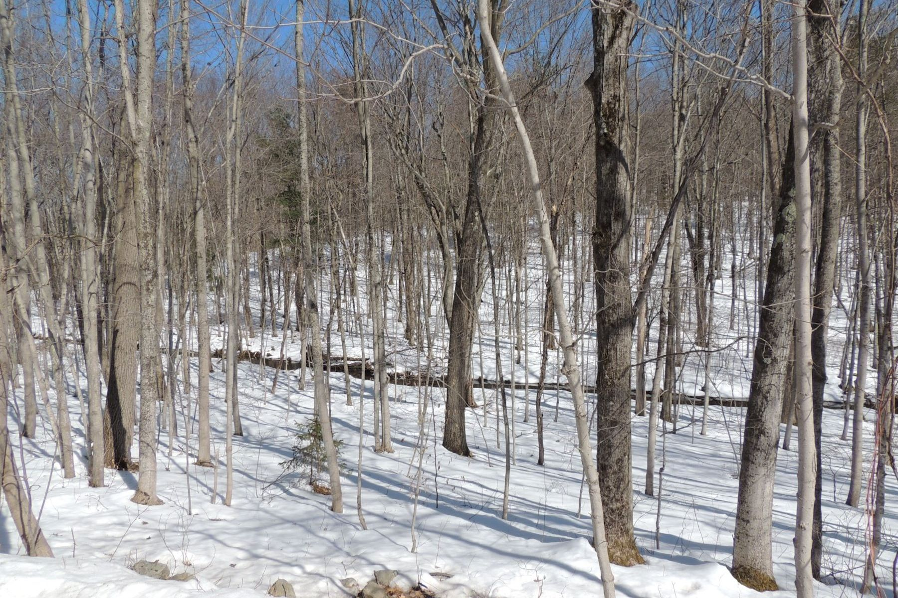 Land for Sale at Earthly Delight Pitts Road Chatham, New York 12136 United States