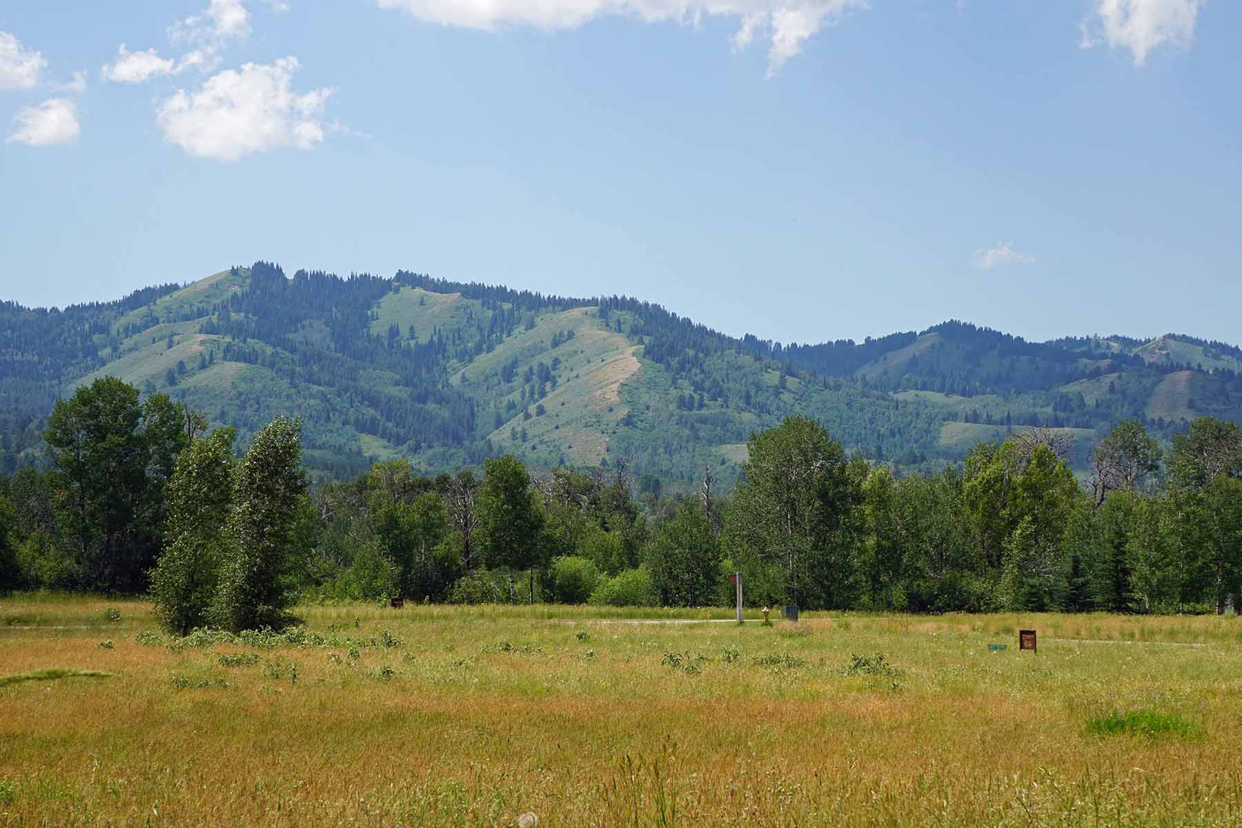 Land for Sale at Beautiful Building Site 3377 Coneflower Cir Victor, Idaho 83455 United States