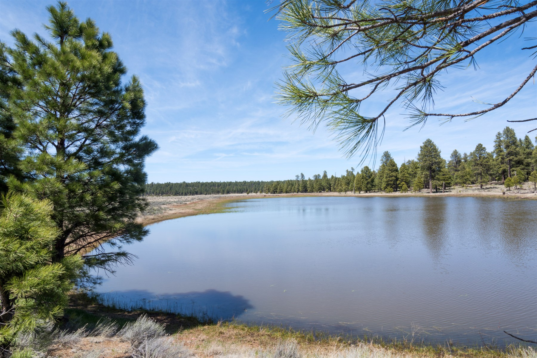 Land for Sale at Williams 00 Forest Service 140 Road RD 3 Williams, Arizona 86046 United States