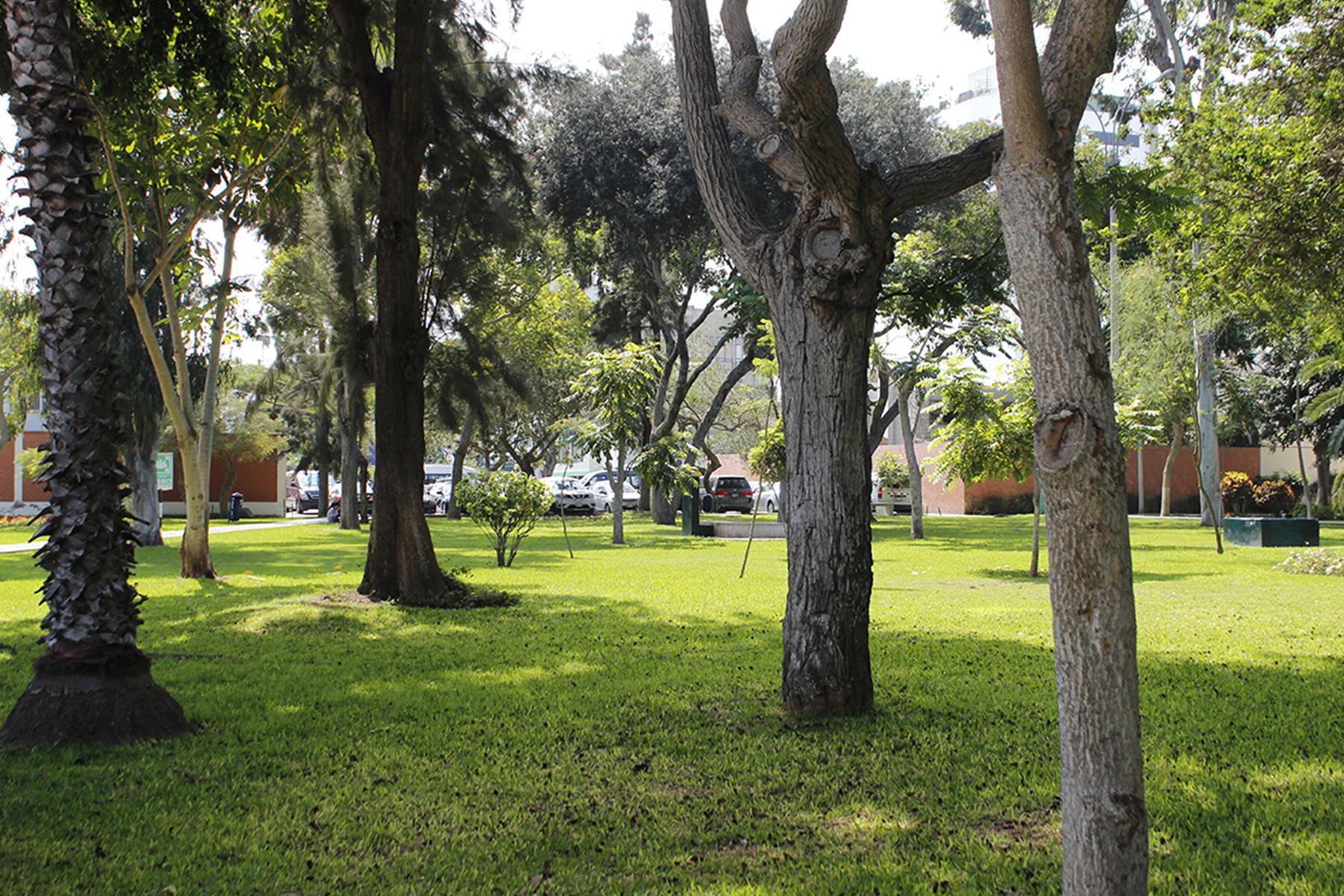 Квартира для того Продажа на Spectacular Project with Park View Miraflores Miguel Aljovin Miraflores, Lima, 18 Перу