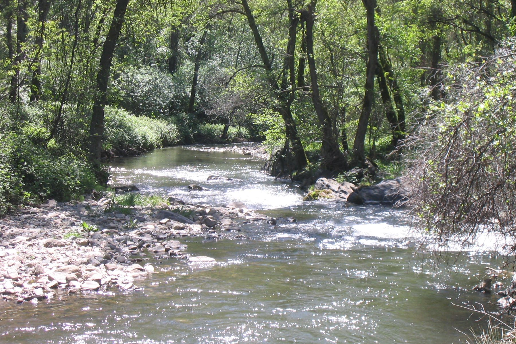 Land for Sale at A River Runs Through It! 615 Leta Court Newcastle, California 95658 United States