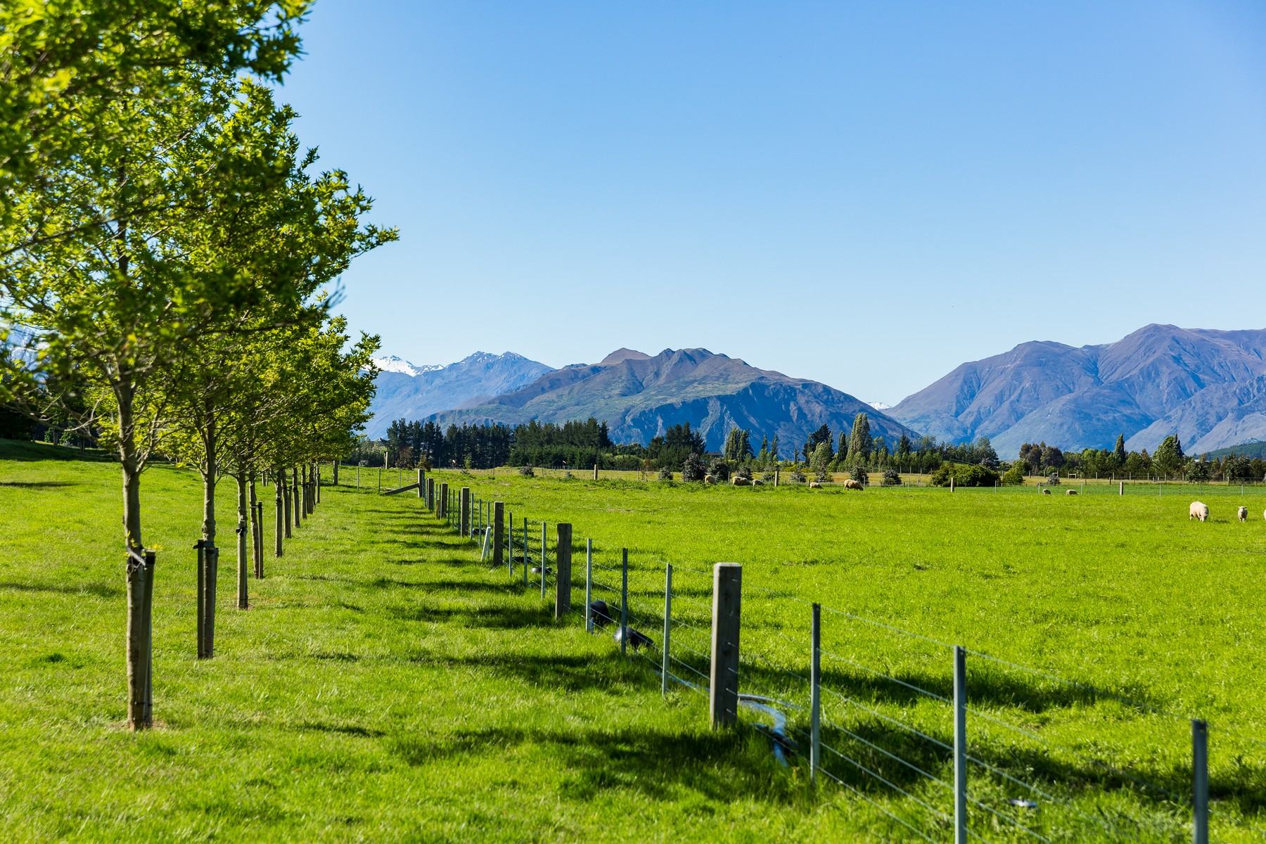 Land for Sale at Hillend Estates Wanaka, Otago, New Zealand